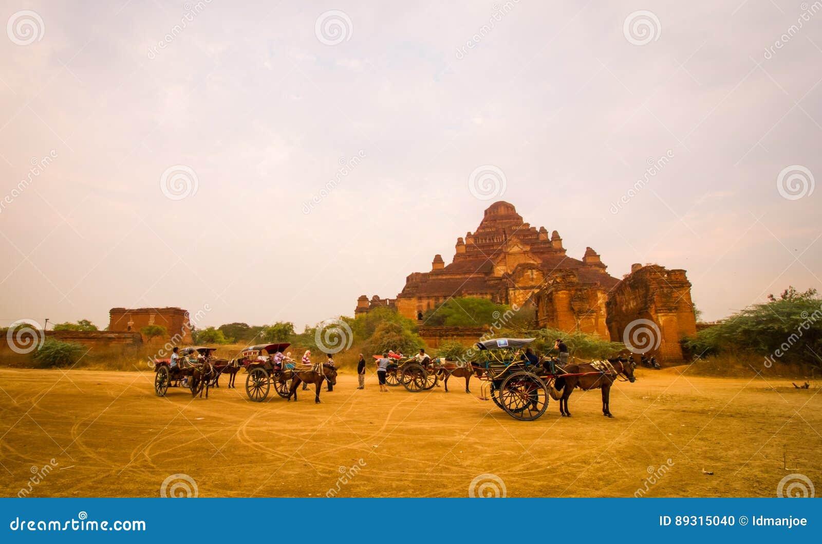 Лошади дефектные в Bagan