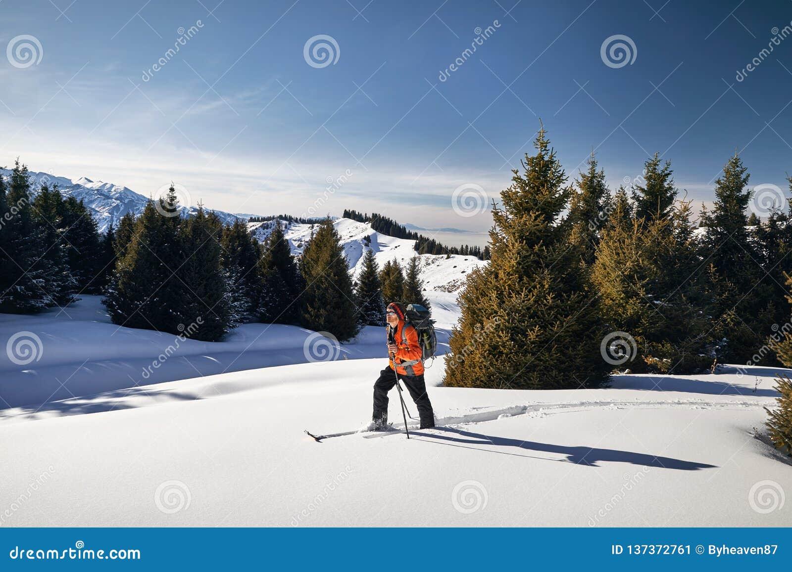 Лыжа путешествуя на свежем снеге порошка