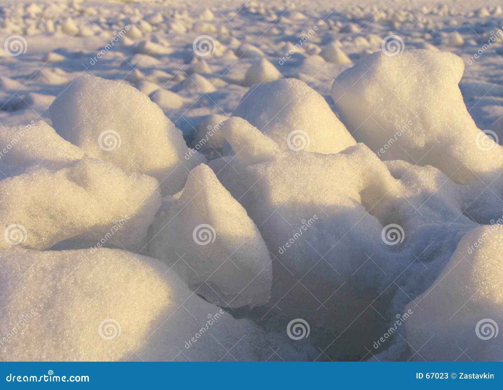 льдед поля