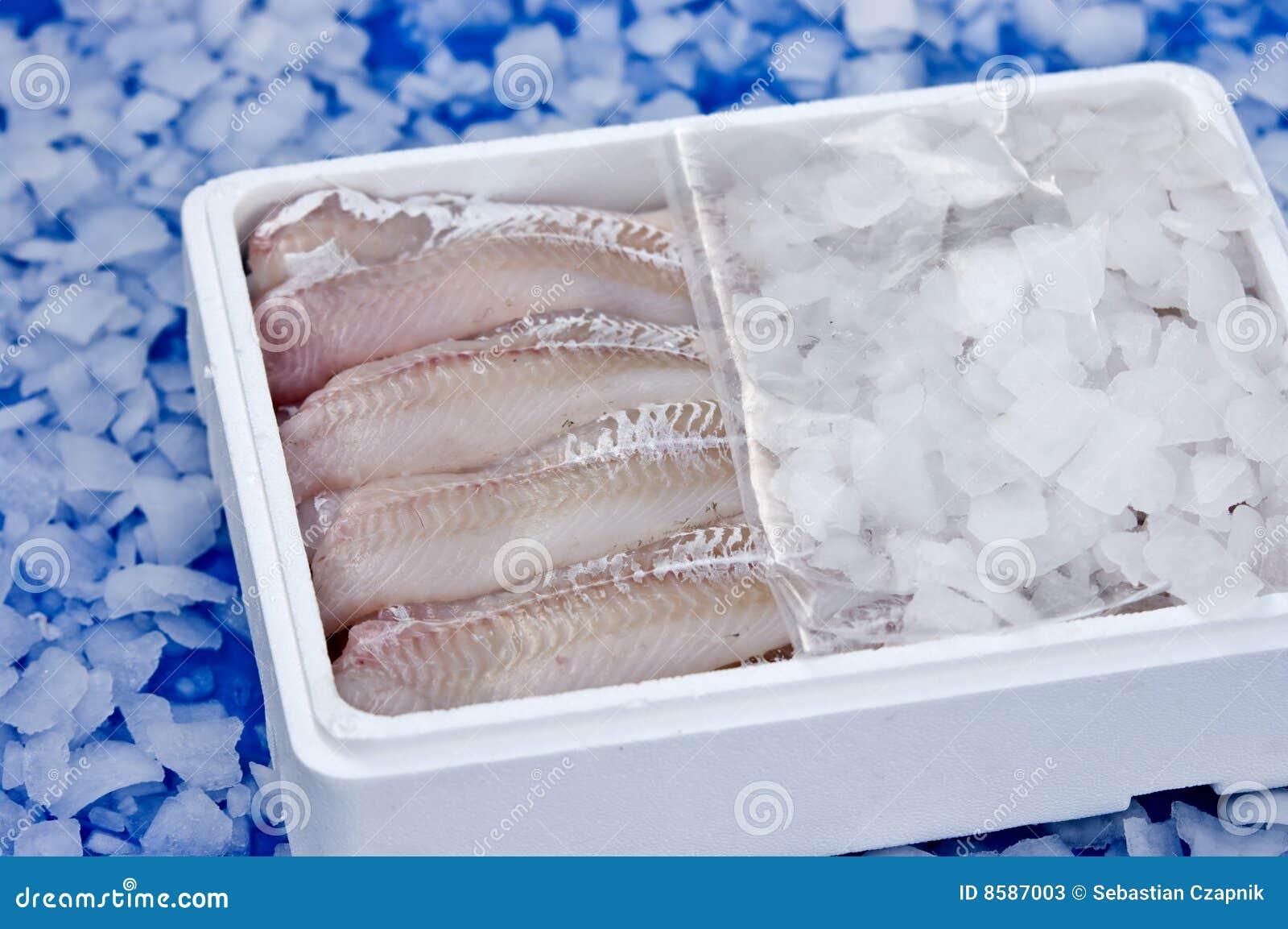льдед рыб