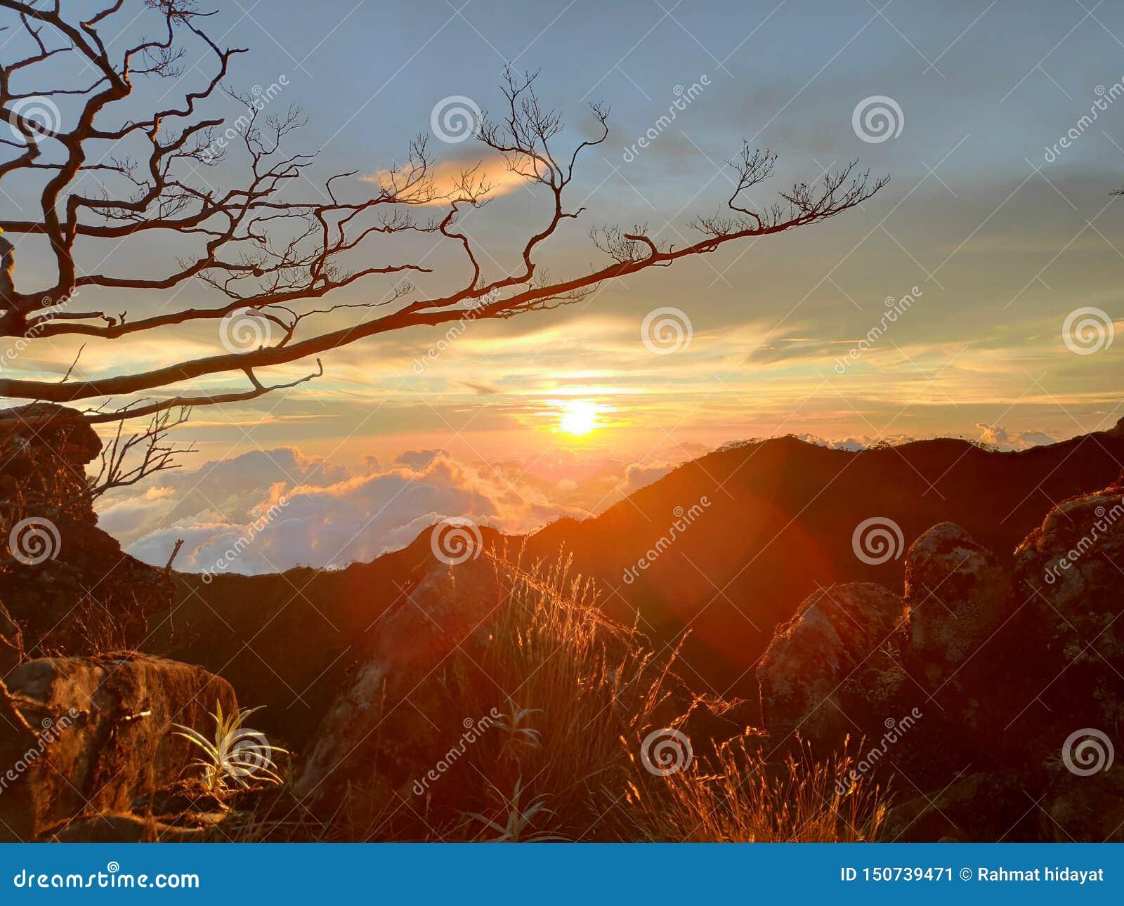 Любовь в заходе солнца