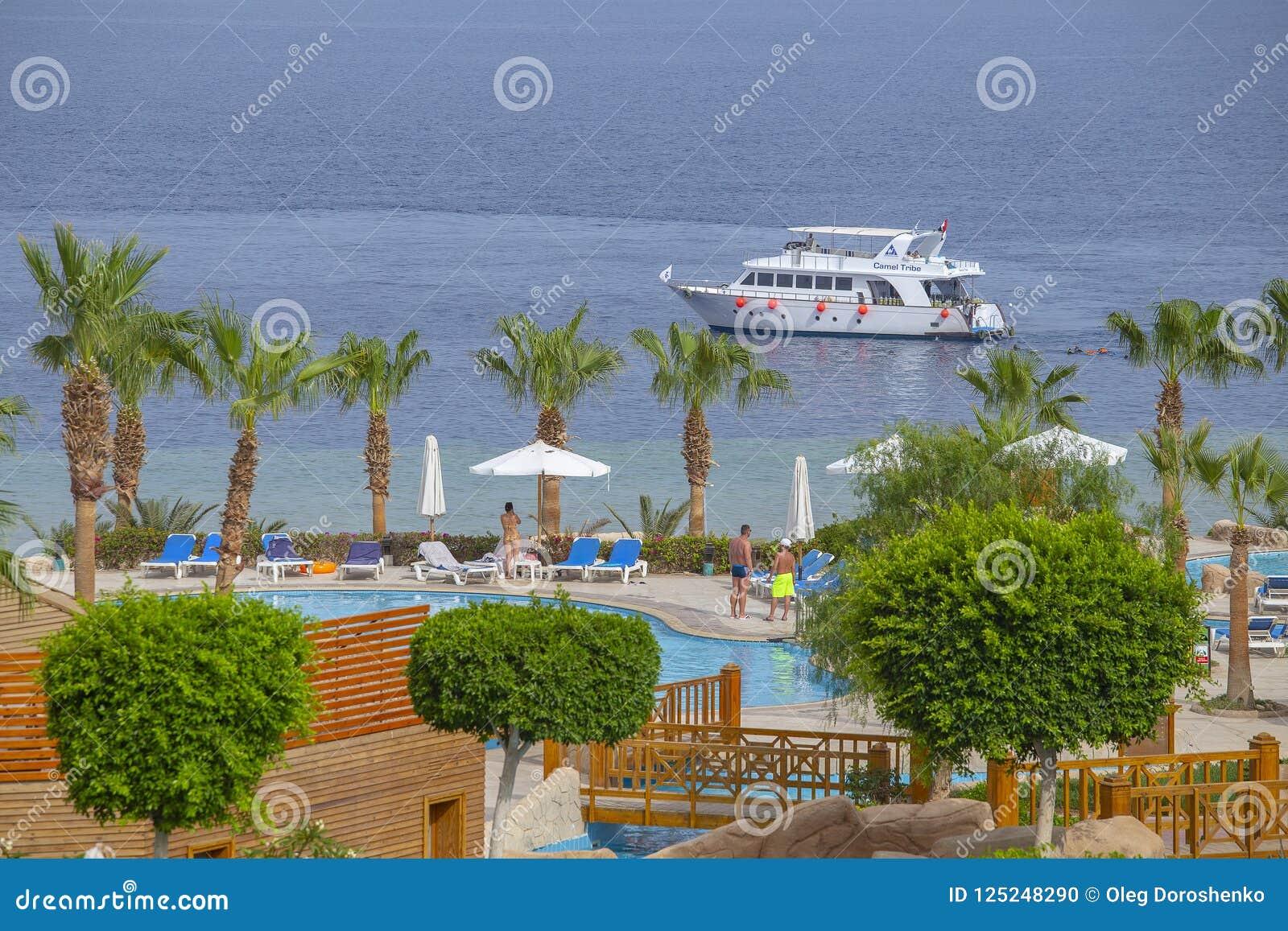 Люди отдыхают в бассейне около Красного Моря в гостинице пляжа, Sharm El Sheikh, Египте