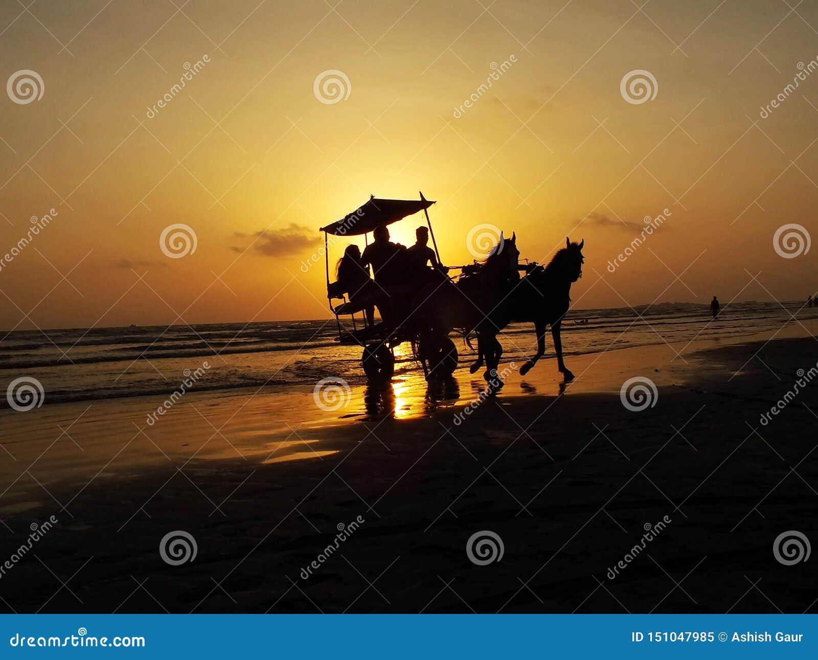 Люди сидя в колеснице лошади на пляже моря