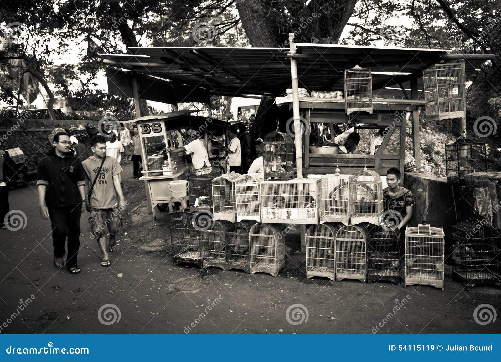 Люди рынков птицы Malang, Индонезии
