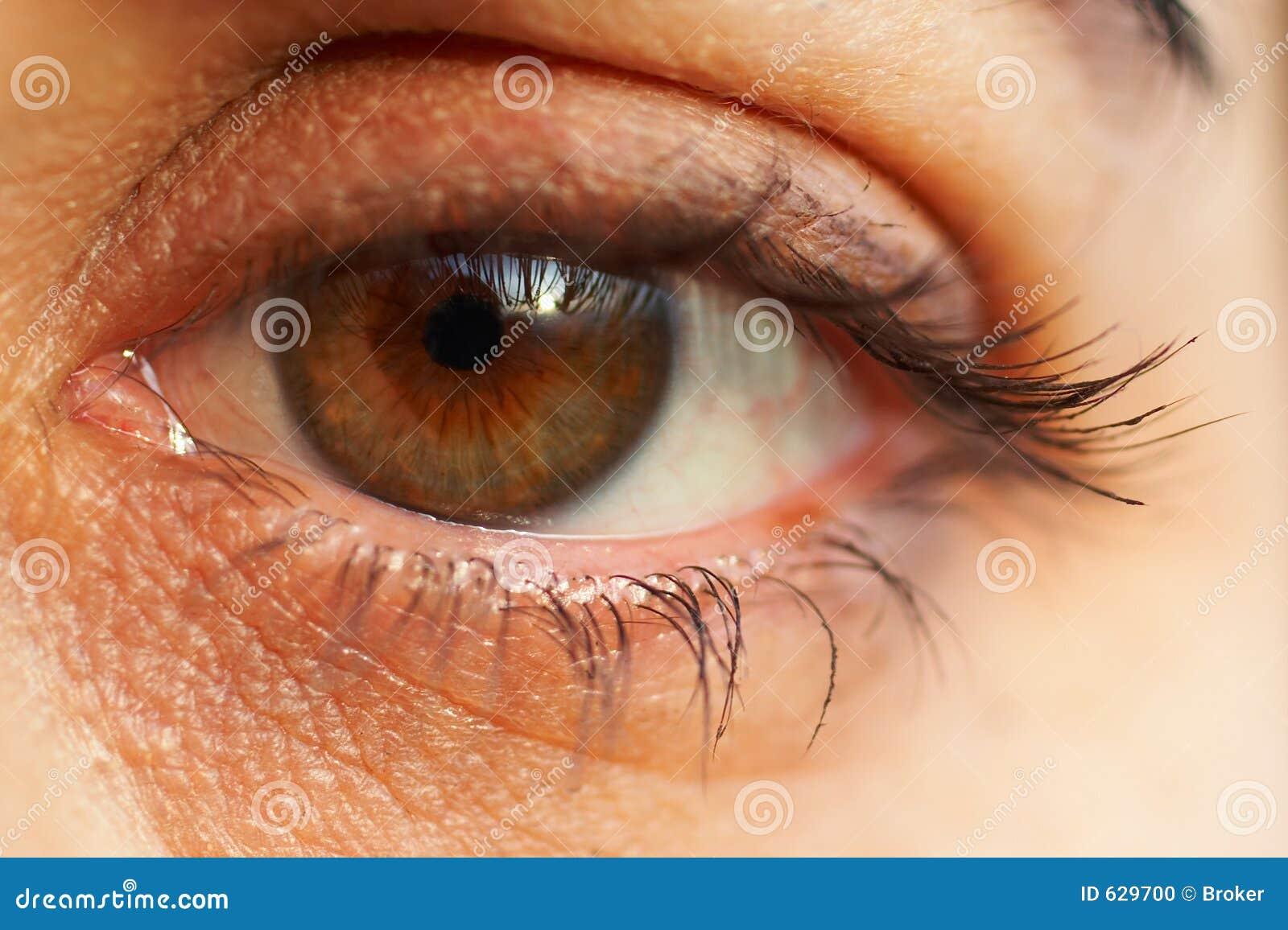 Download макрос глаза детали стоковое фото. изображение насчитывающей сторона - 629700