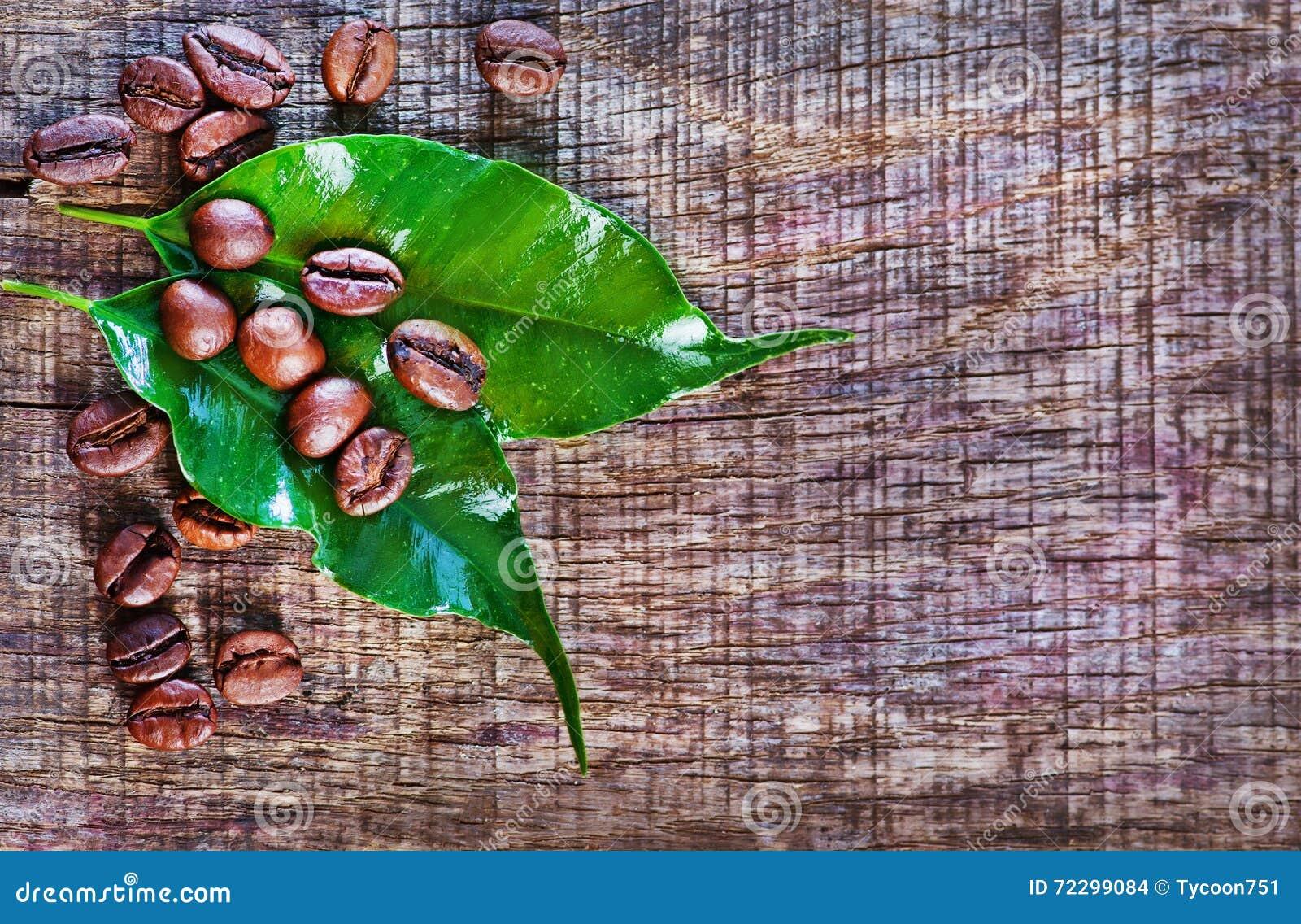 Download макрос кофе завтрака фасолей идеально изолированный над белизной Стоковое Фото - изображение насчитывающей напитка, грубо: 72299084