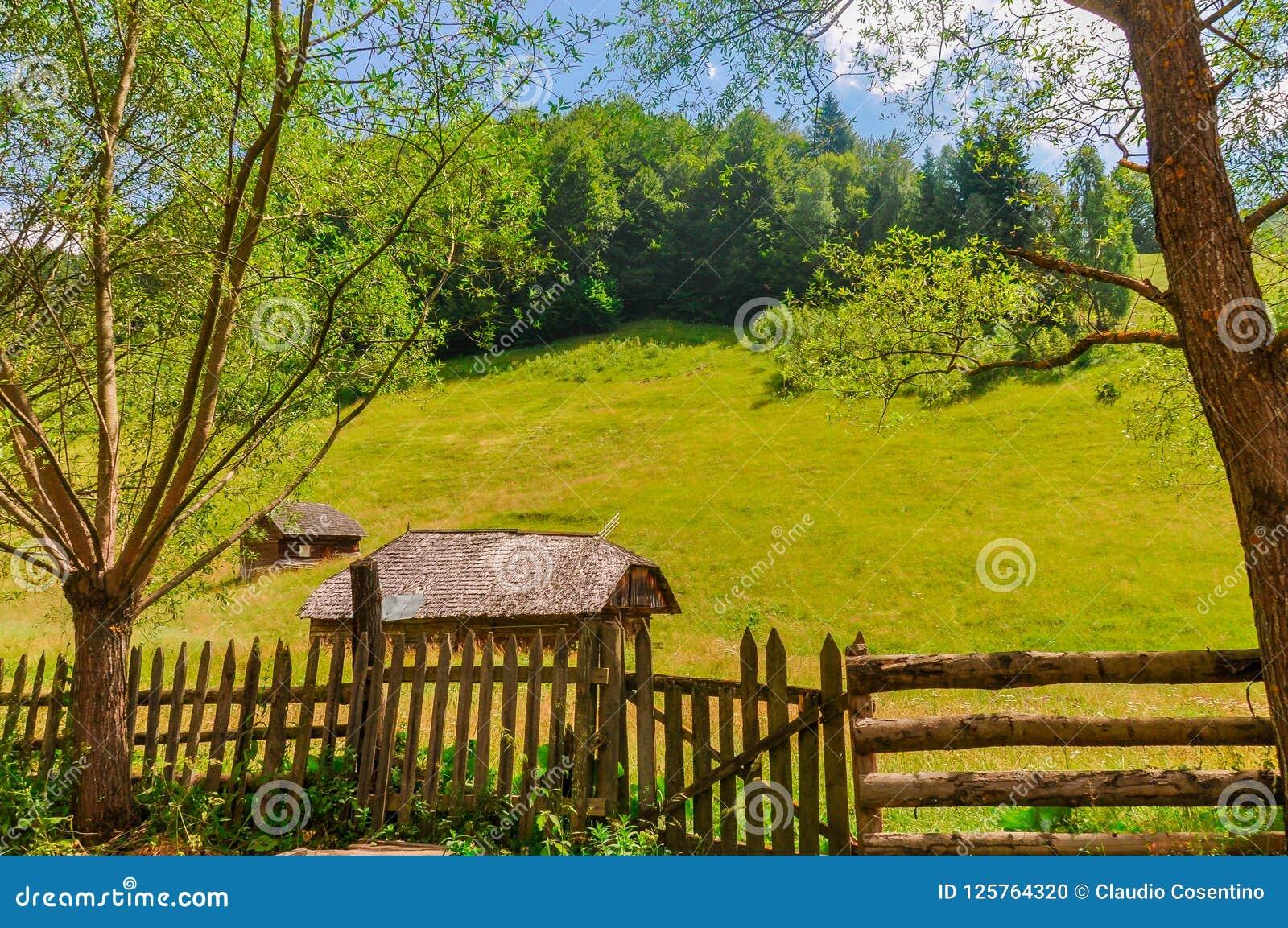 Малые сельские хаты в середине зеленых лугов в горах