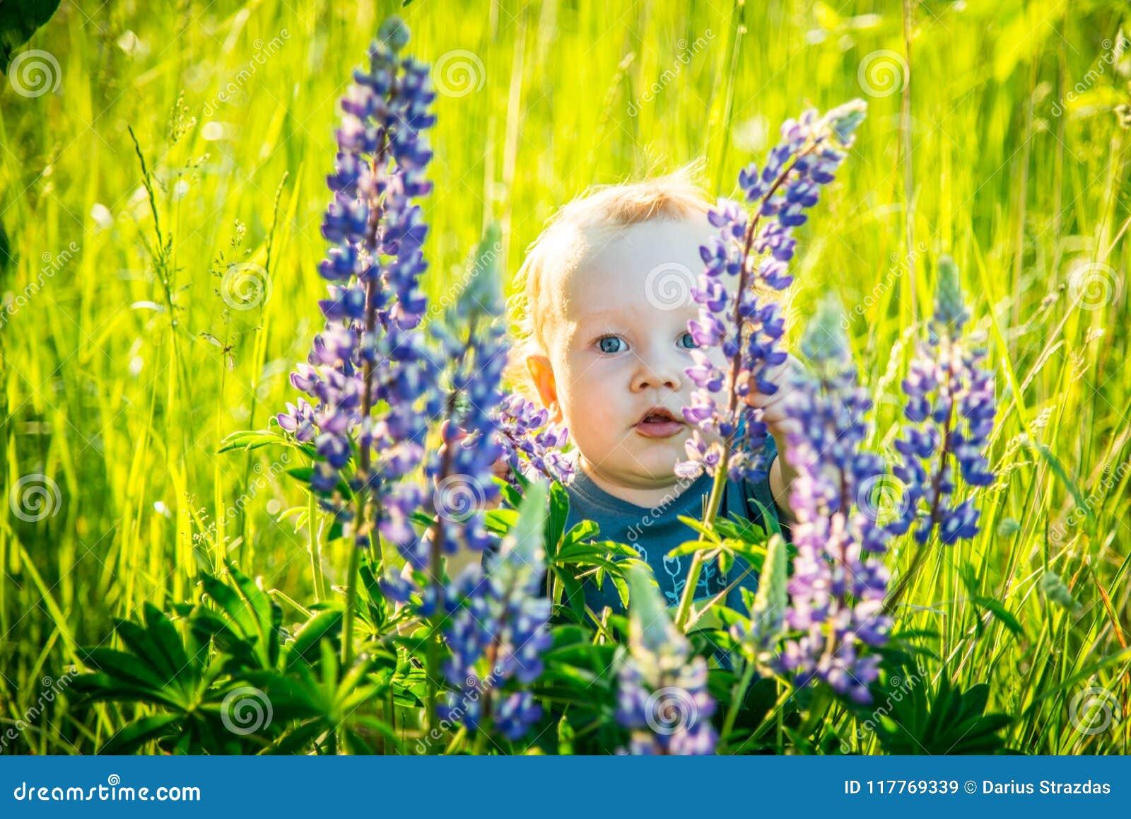 Малыш ребенк в одичалый прятать луга