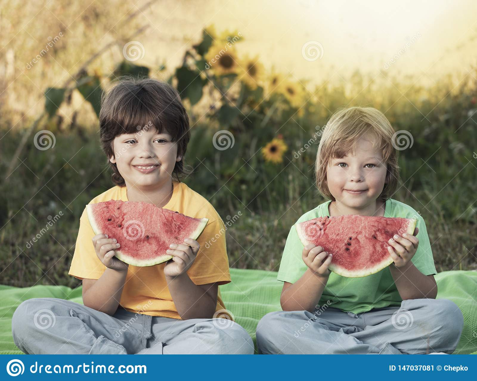 2 мальчика с плодом в парке Счастливый ребенок есть арбуз в саде