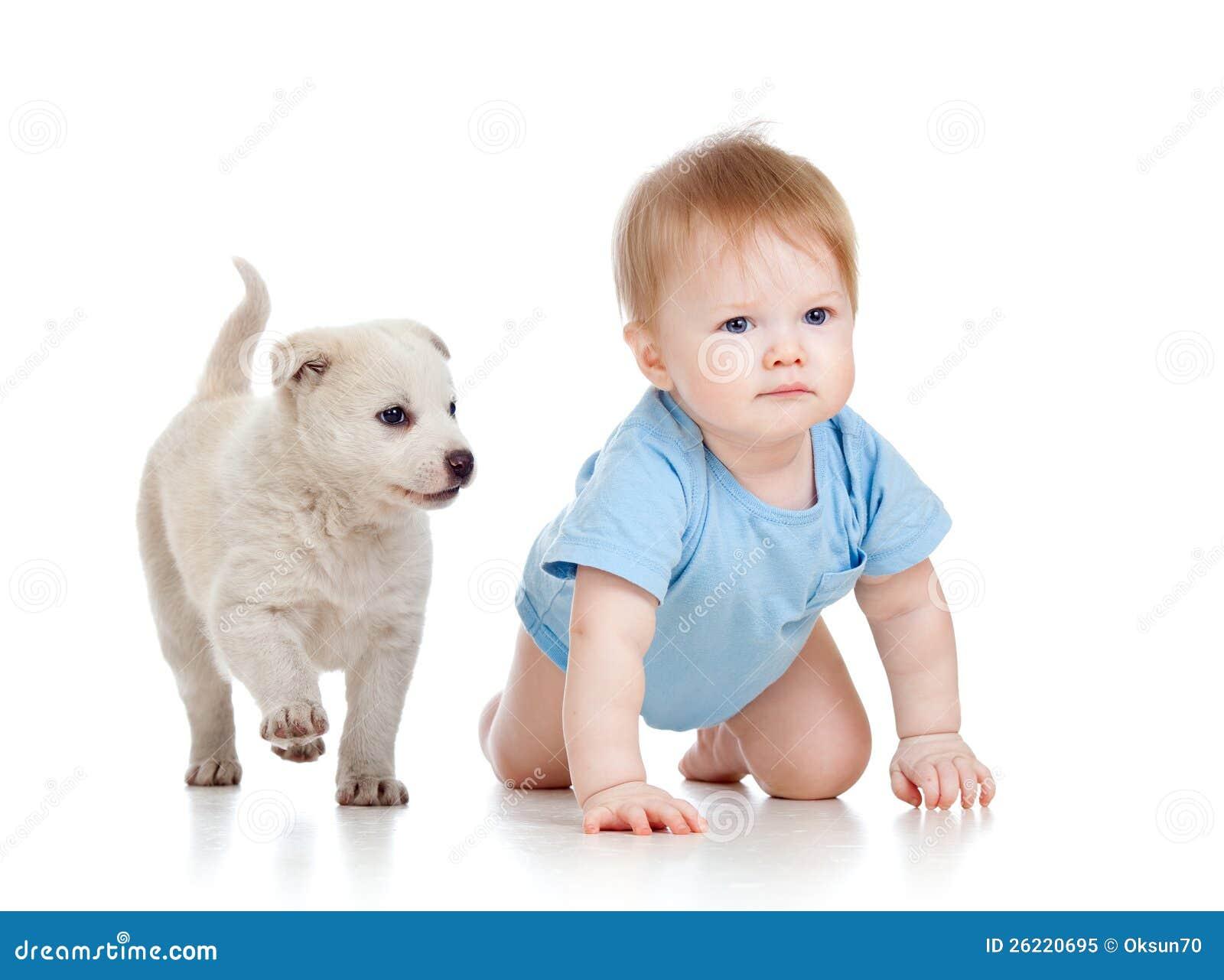 Мальчик ребенка и щенок собаки играя и вползая
