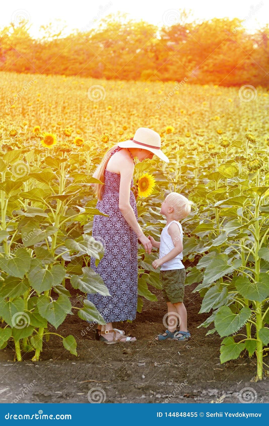 Мама и меньший сын стоят против зацветая поля солнцецветов Вертикальная рамка