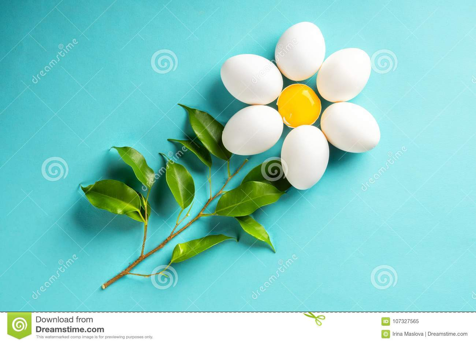 Маргаритка стоцвета от яичка и желток покидают концепция весны пасхи