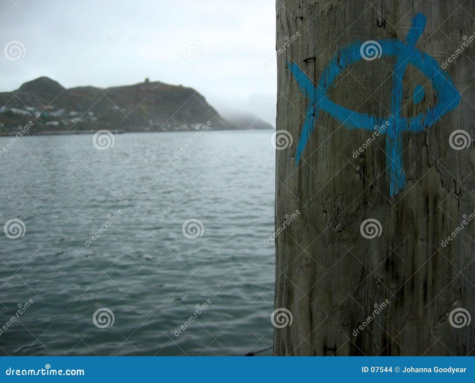 маркировки рыб
