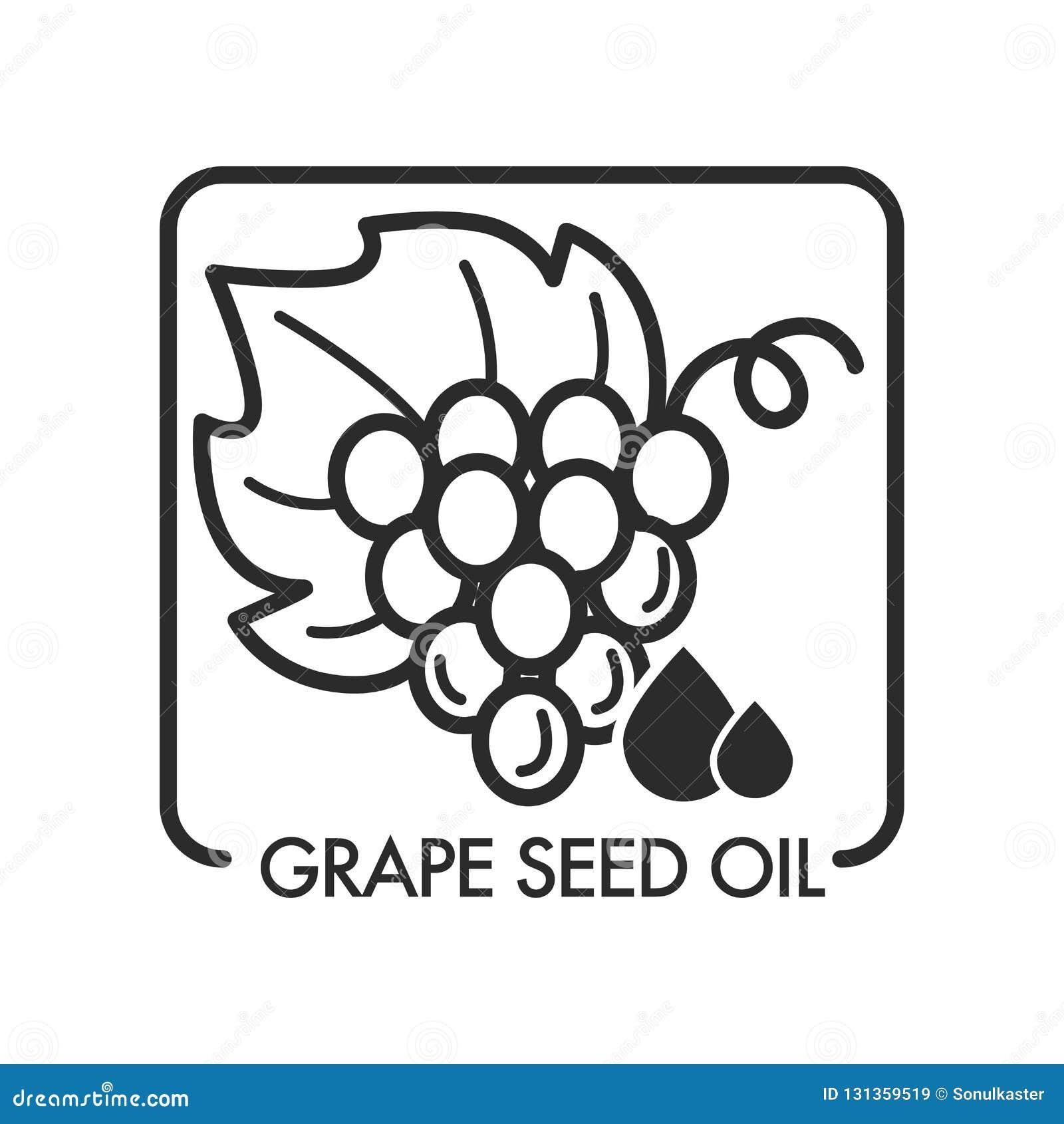 Масло семени виноградины, monochrome логотип эскиза план изолированный