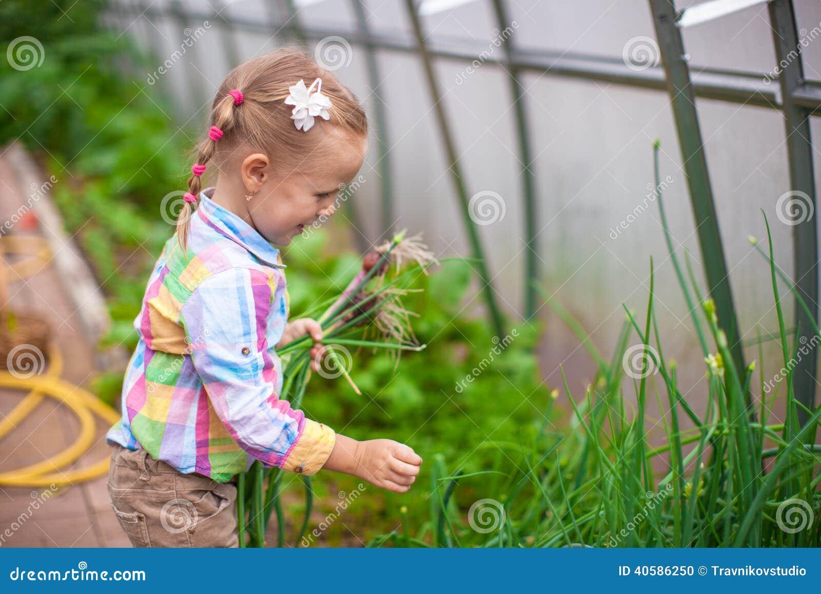 Маленькая милая девушка с сбором в парнике