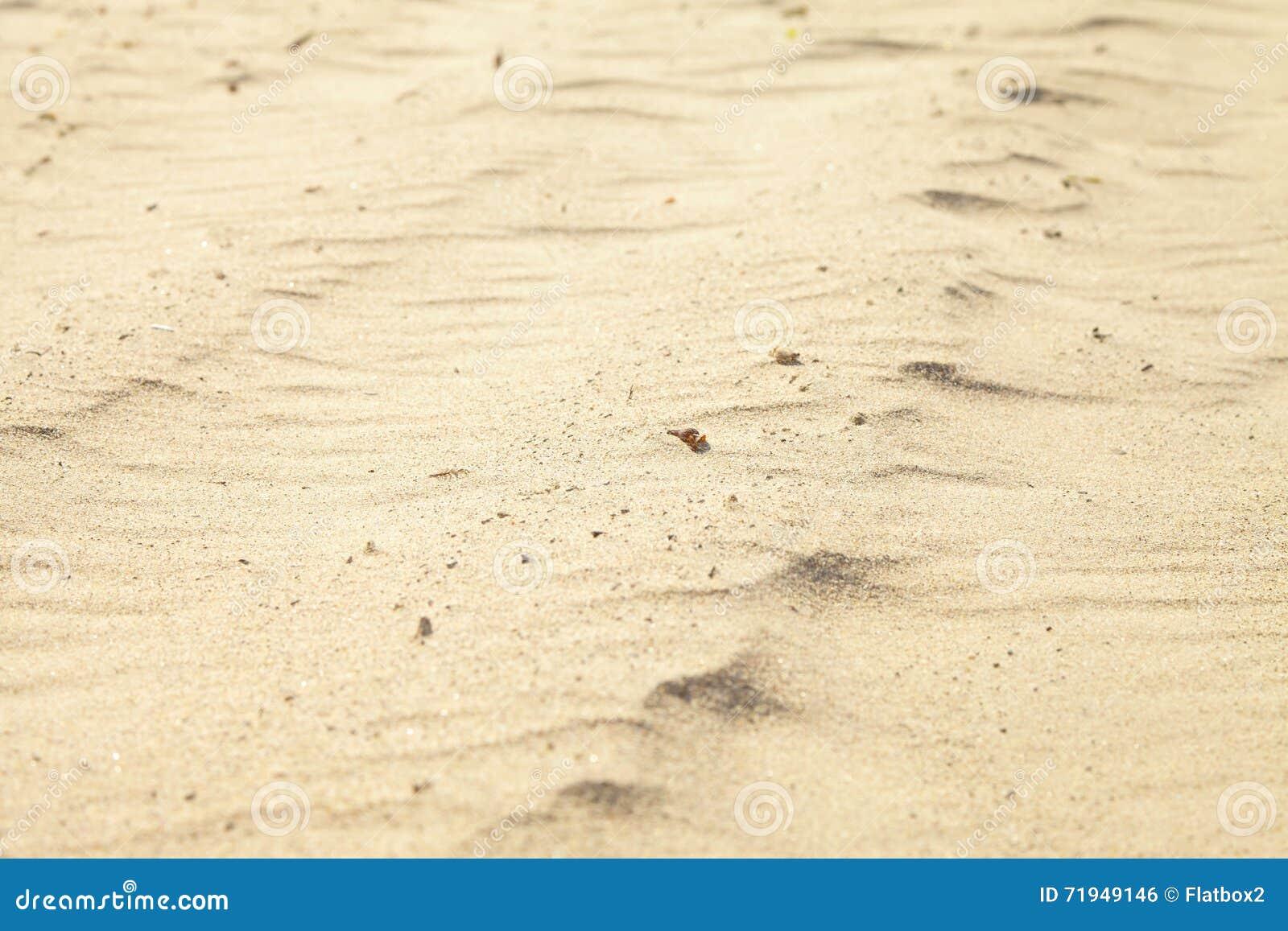 Малые песчанные дюны на пляже
