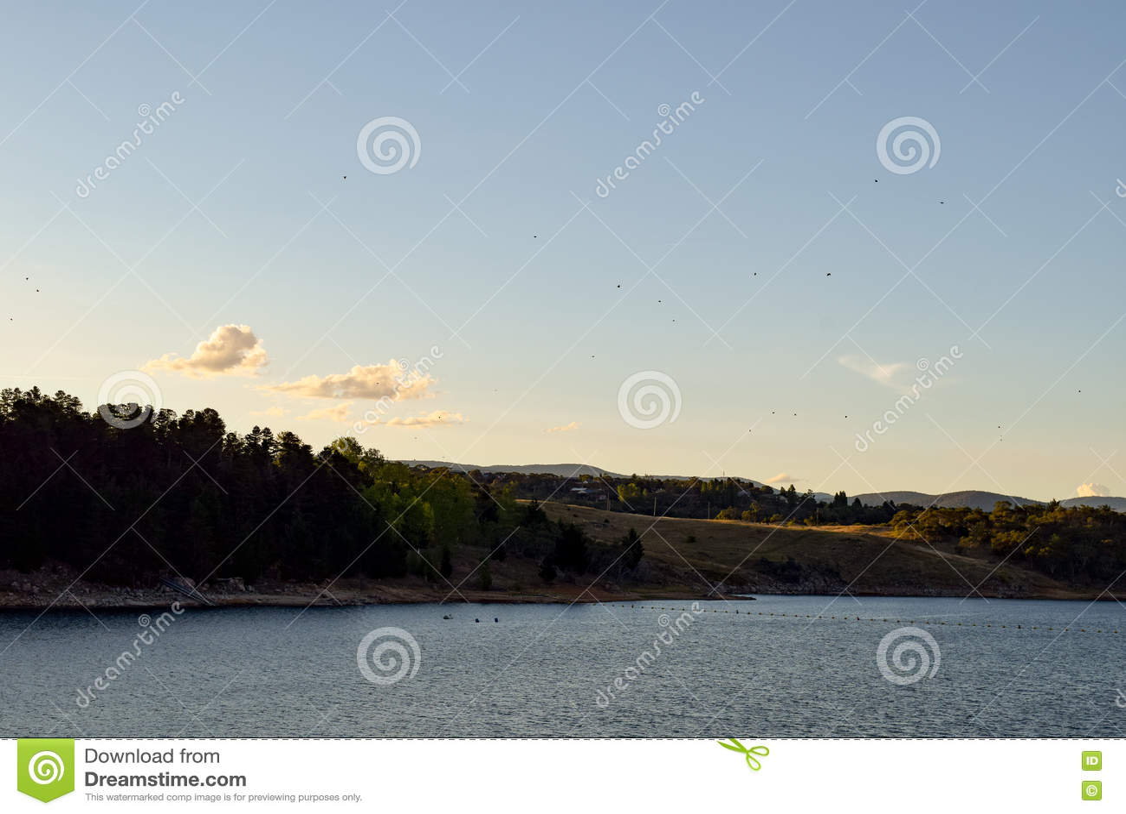 Download Малые птицы летая над озером Jindabyne и окружающими горами Стоковое Изображение - изображение насчитывающей вода, озеро: 72277995