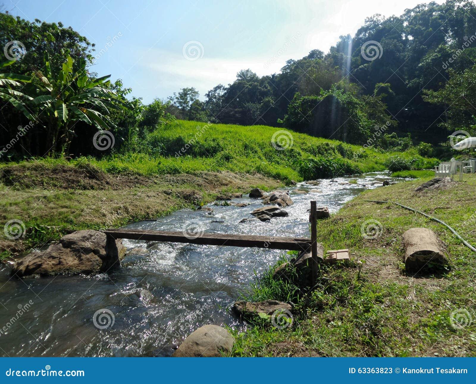 Малый поток через зеленую деревню в долине