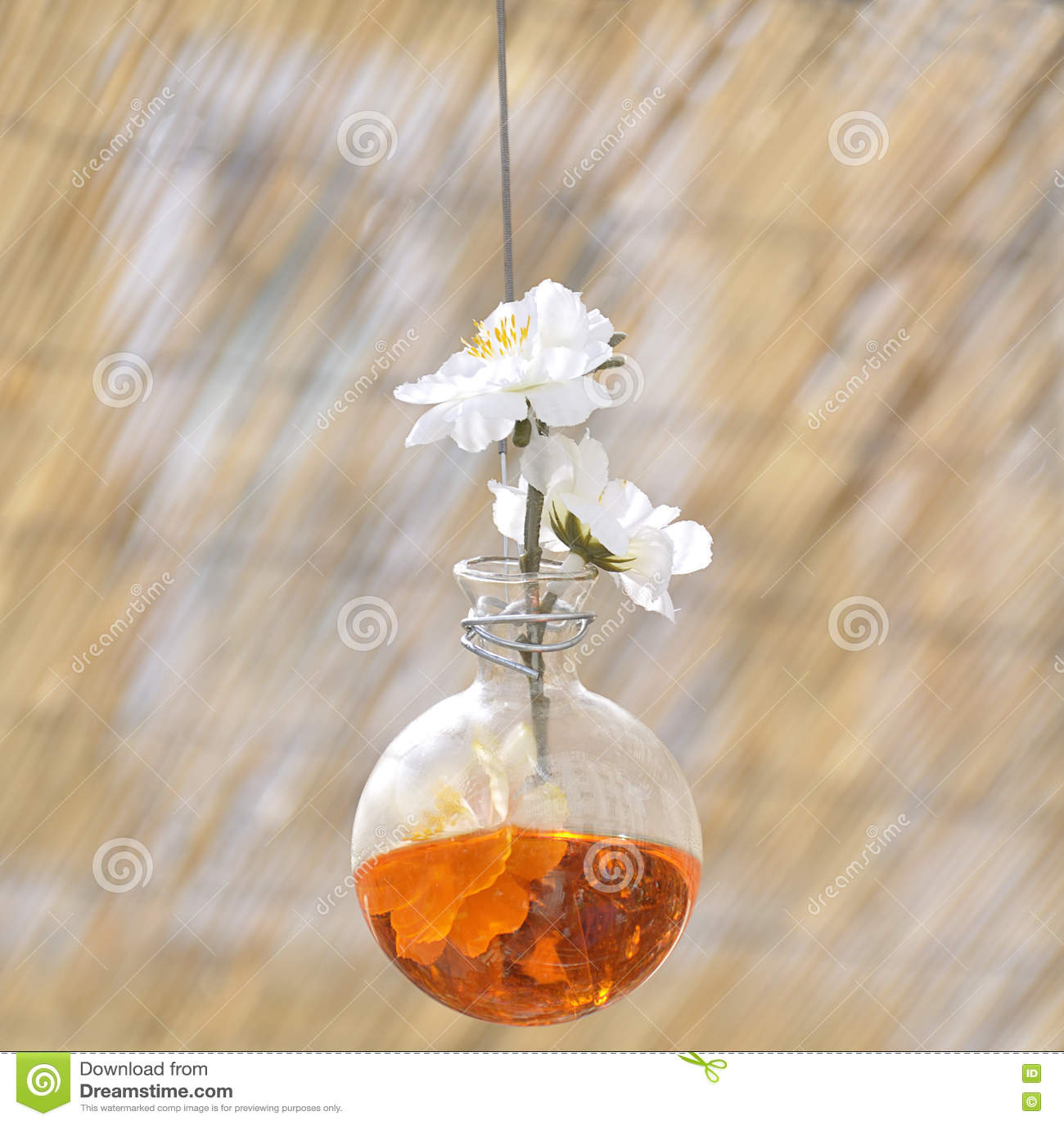 Download Малый стеклянный висеть ваз Стоковое Изображение - изображение насчитывающей висеть, естественно: 72299437