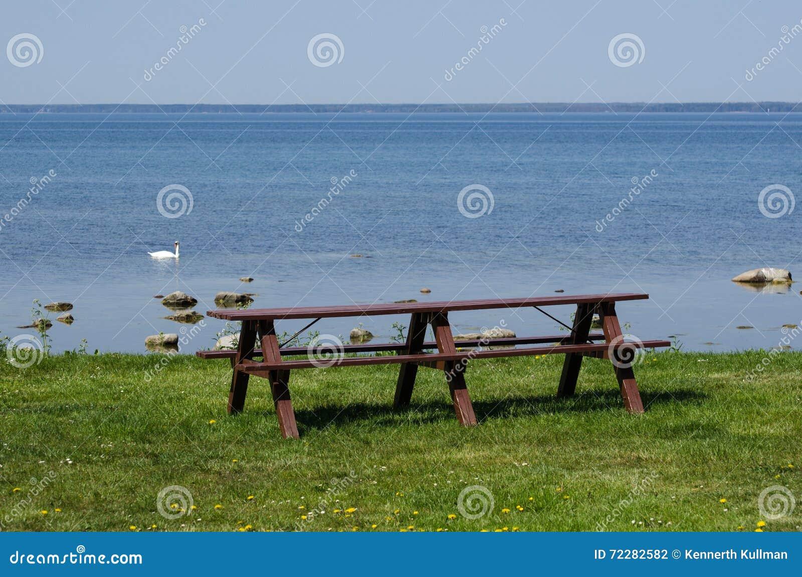 Download Мебель портового района стоковое фото. изображение насчитывающей green - 72282582