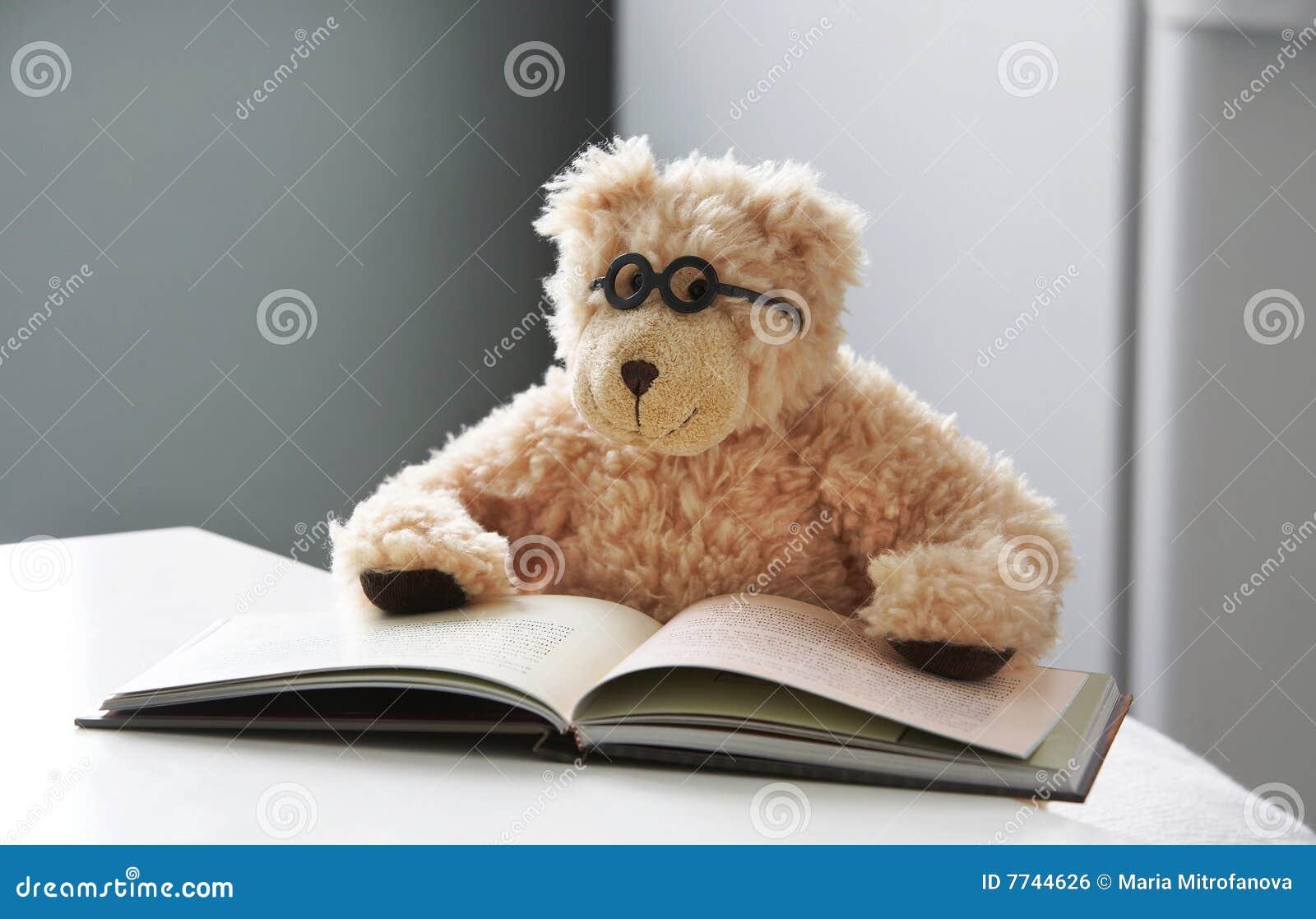 медведь 08