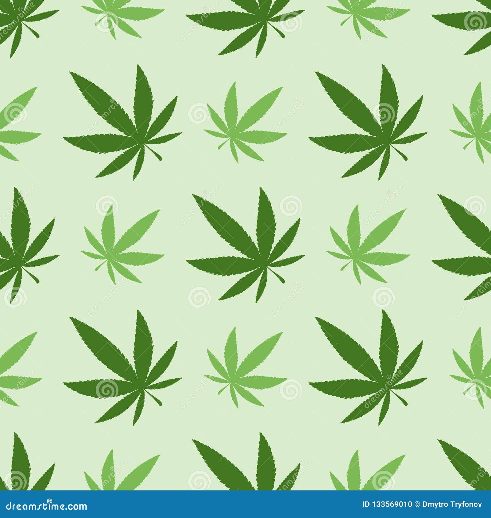 Марихуана бумага марихуана в тени