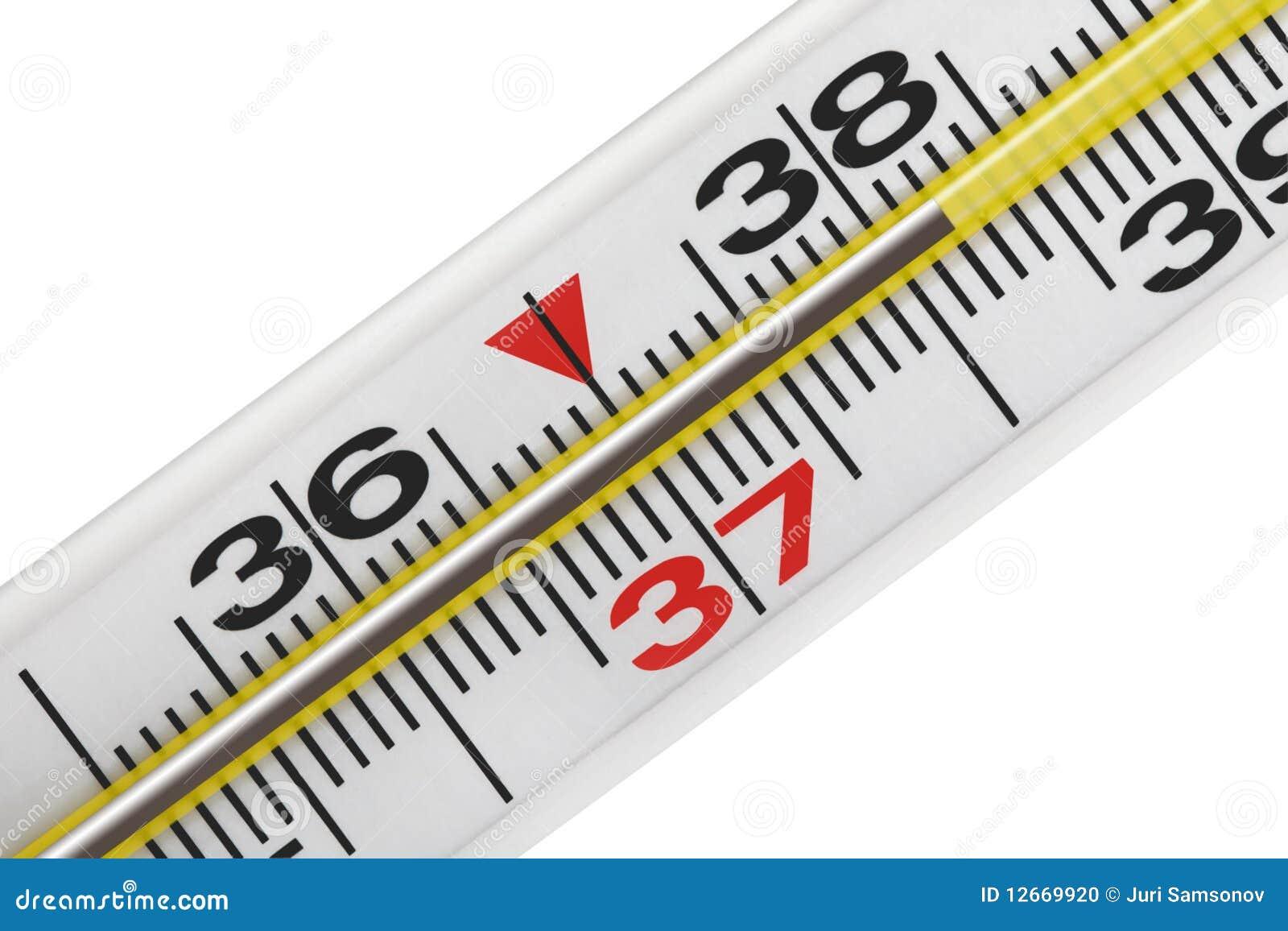 фото медицинский термометр