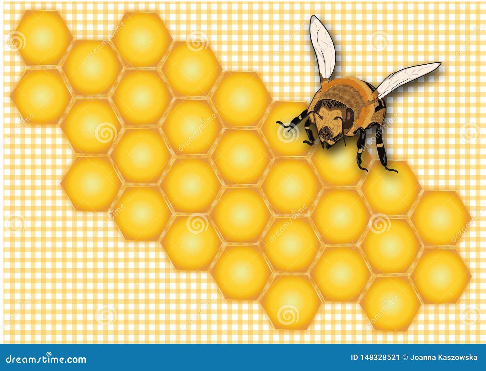 Мед, сот, ярлык меда, ярлык опарника меда, лето, насекомое, желтая пчела, помадка, предпосылка меда,