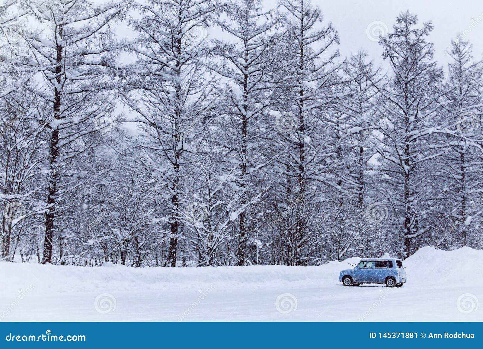 Меньший автомобиль на снежной улице