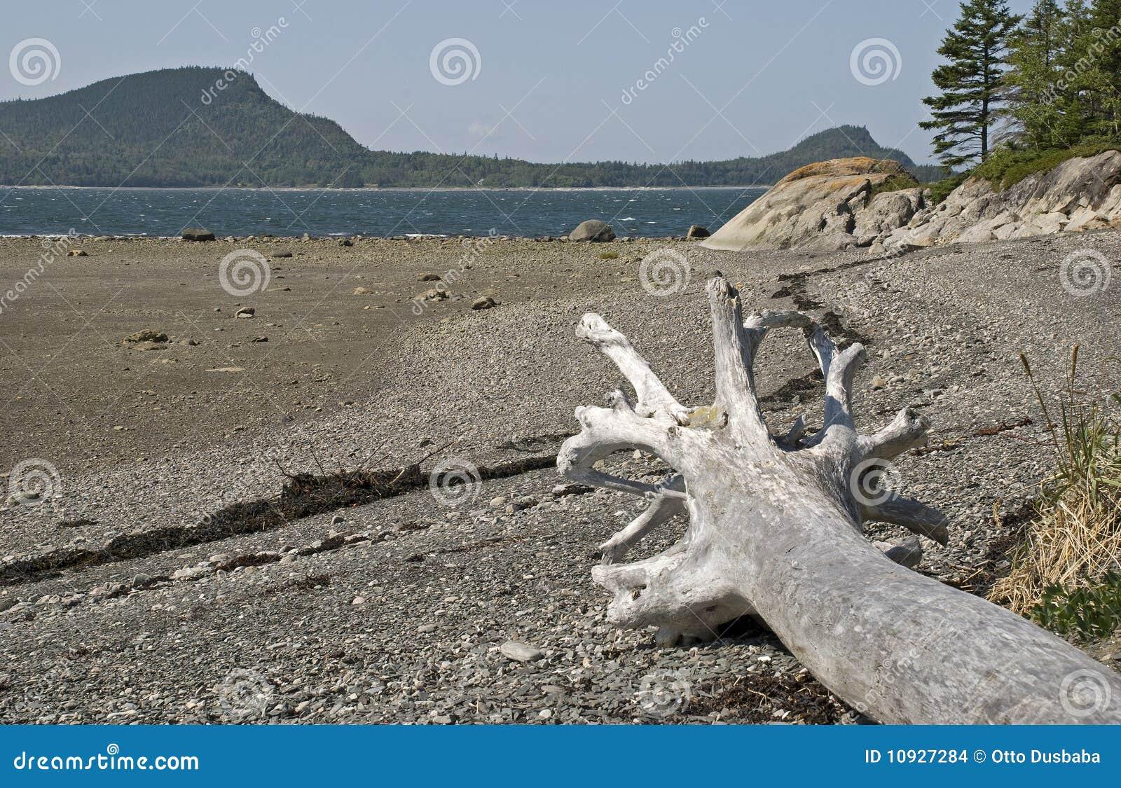 мертвый вал st берега реки lawrence