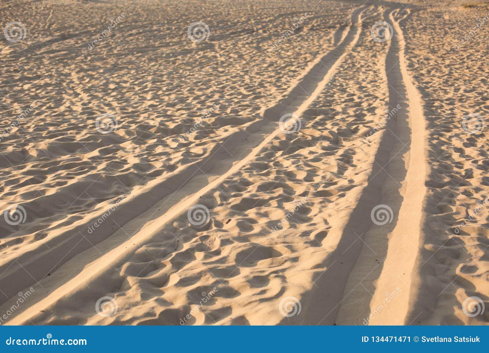 Метки колеса в песке Следы автомобиля пустыня