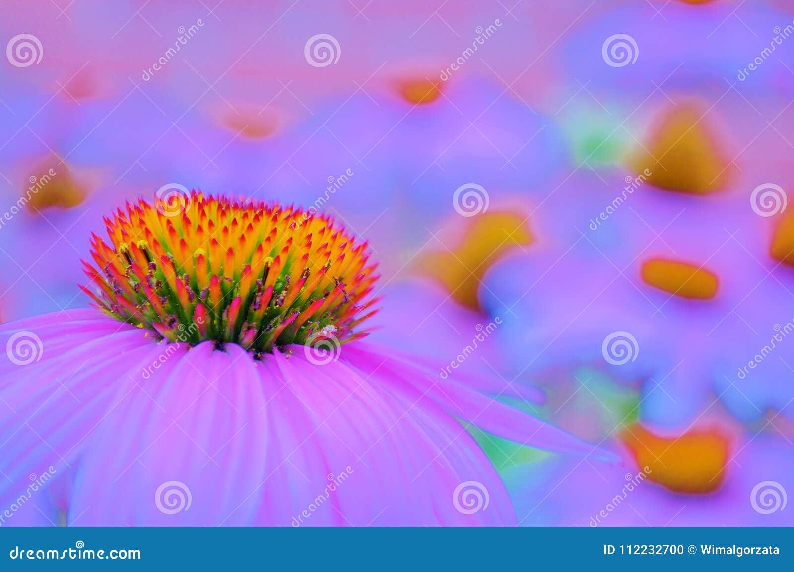 Мечтательное поле с цветками конуса