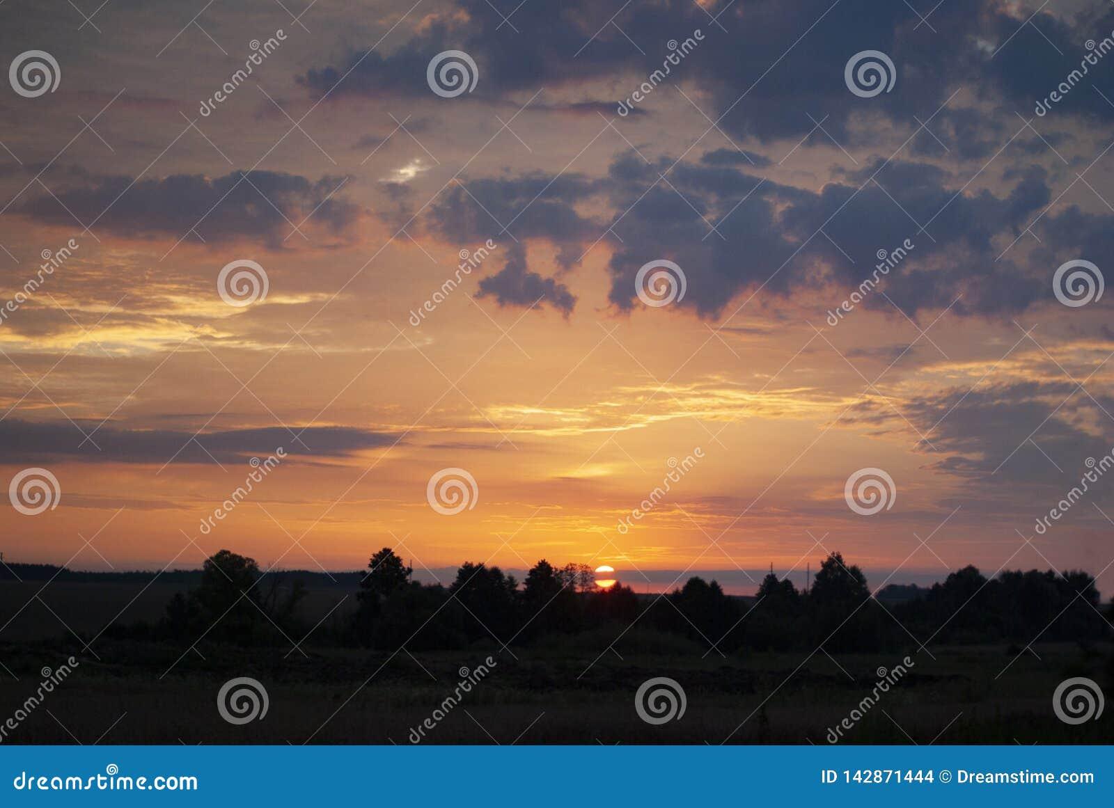 Милая жизнерадостная девушка играя на луге, поле redhead Красивая маленькая девочка в луге около солнцецветов и усмехаться мягко