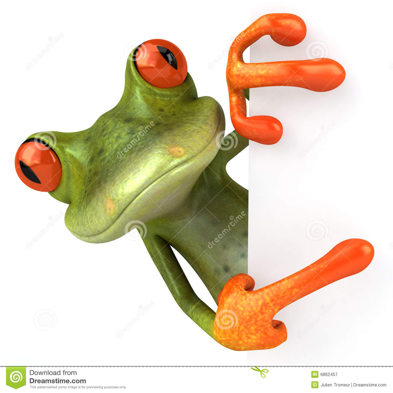 милая лягушка немногая