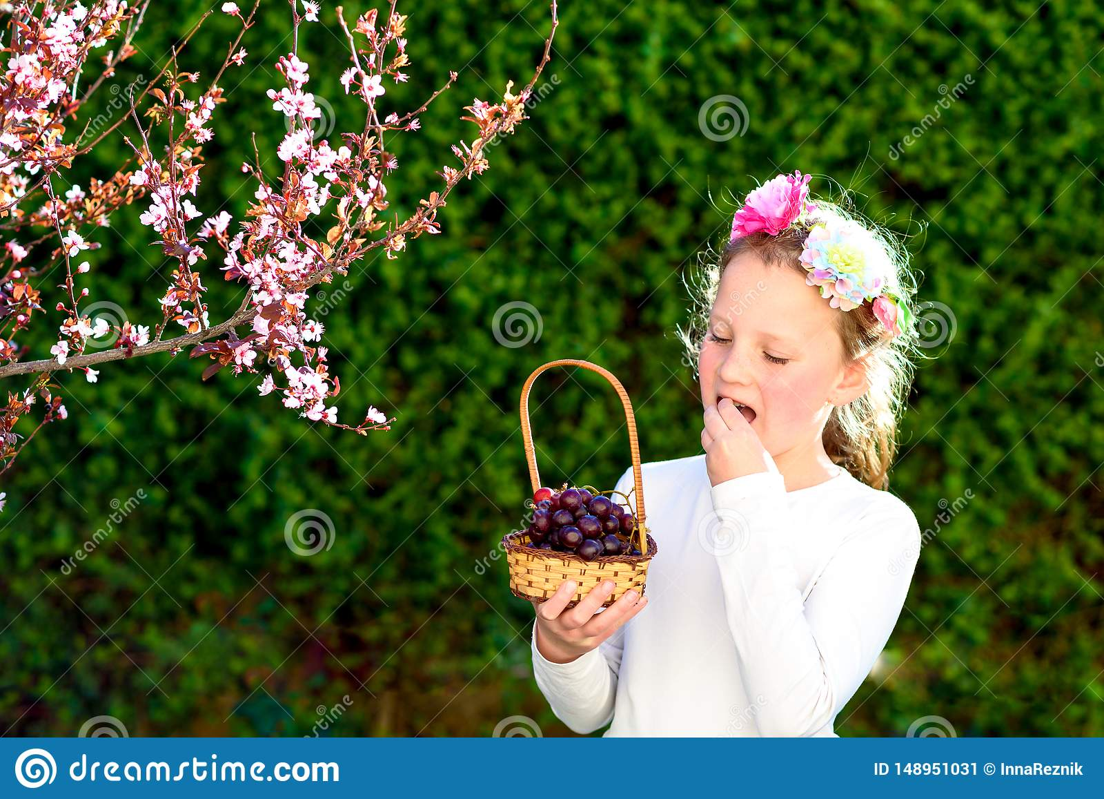 Милая маленькая девочка представляя со свежими фруктами в солнечном саде Маленькая девочка с корзиной виноградин