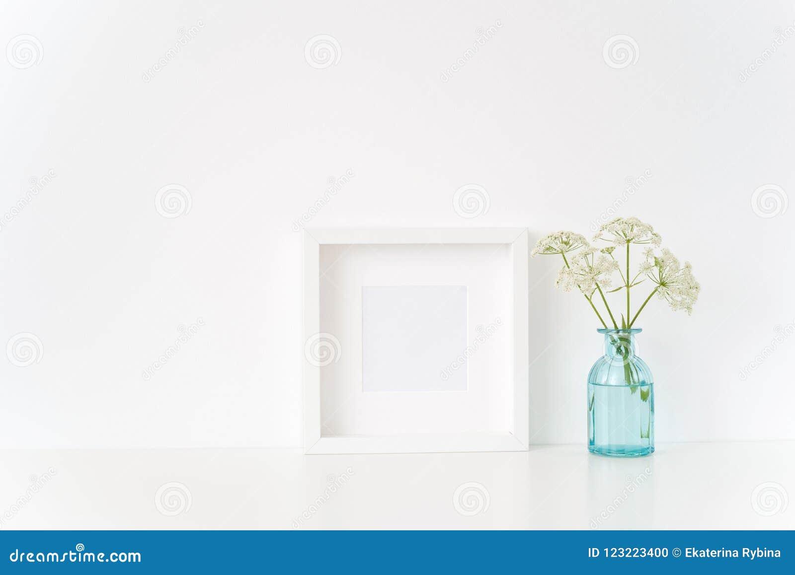 Милая насмешка рамки белого квадрата вверх с Aegopodium в прозрачной голубой вазе Модель-макет для цитаты, продвижения, заголовка