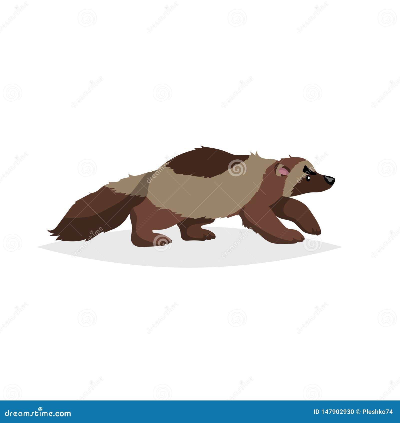 росомаха картинка животного мгновенный займ онлайн на киви