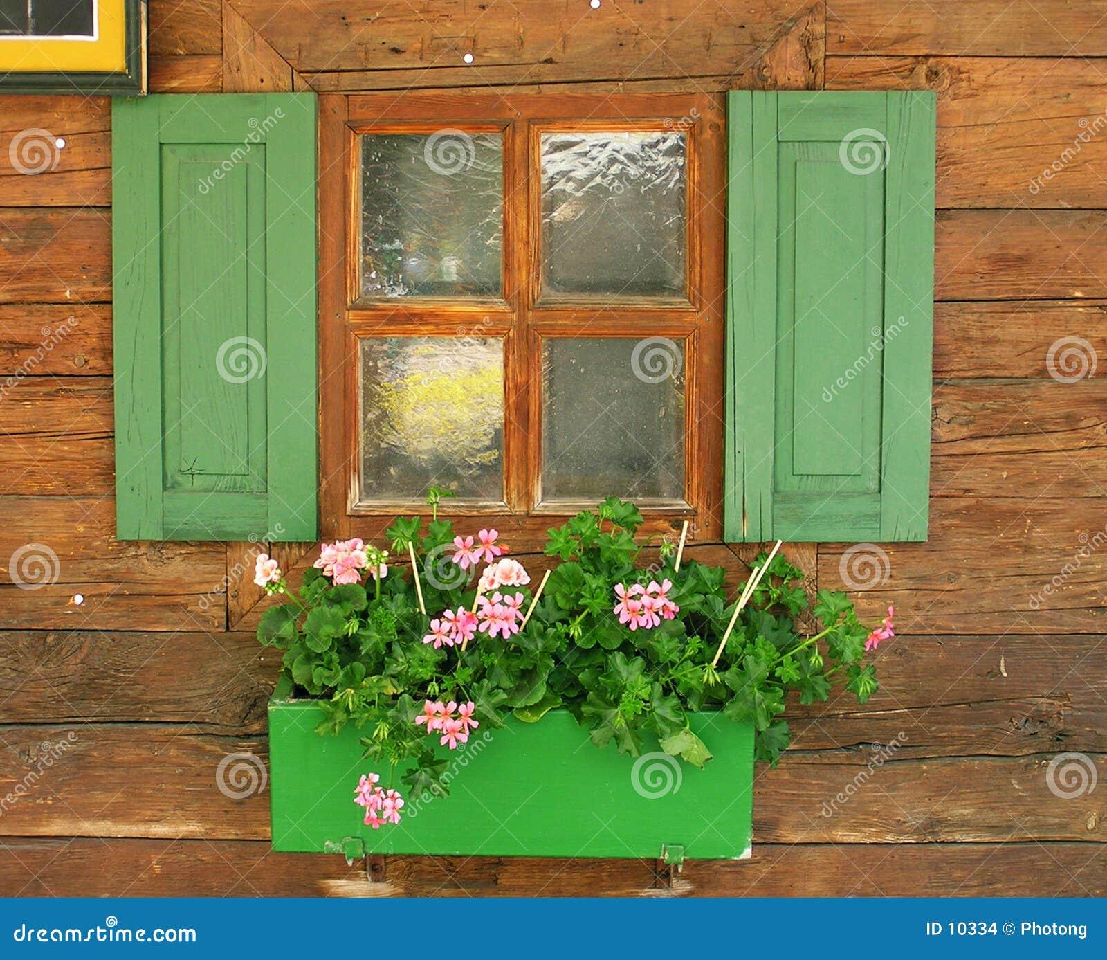 милое окно