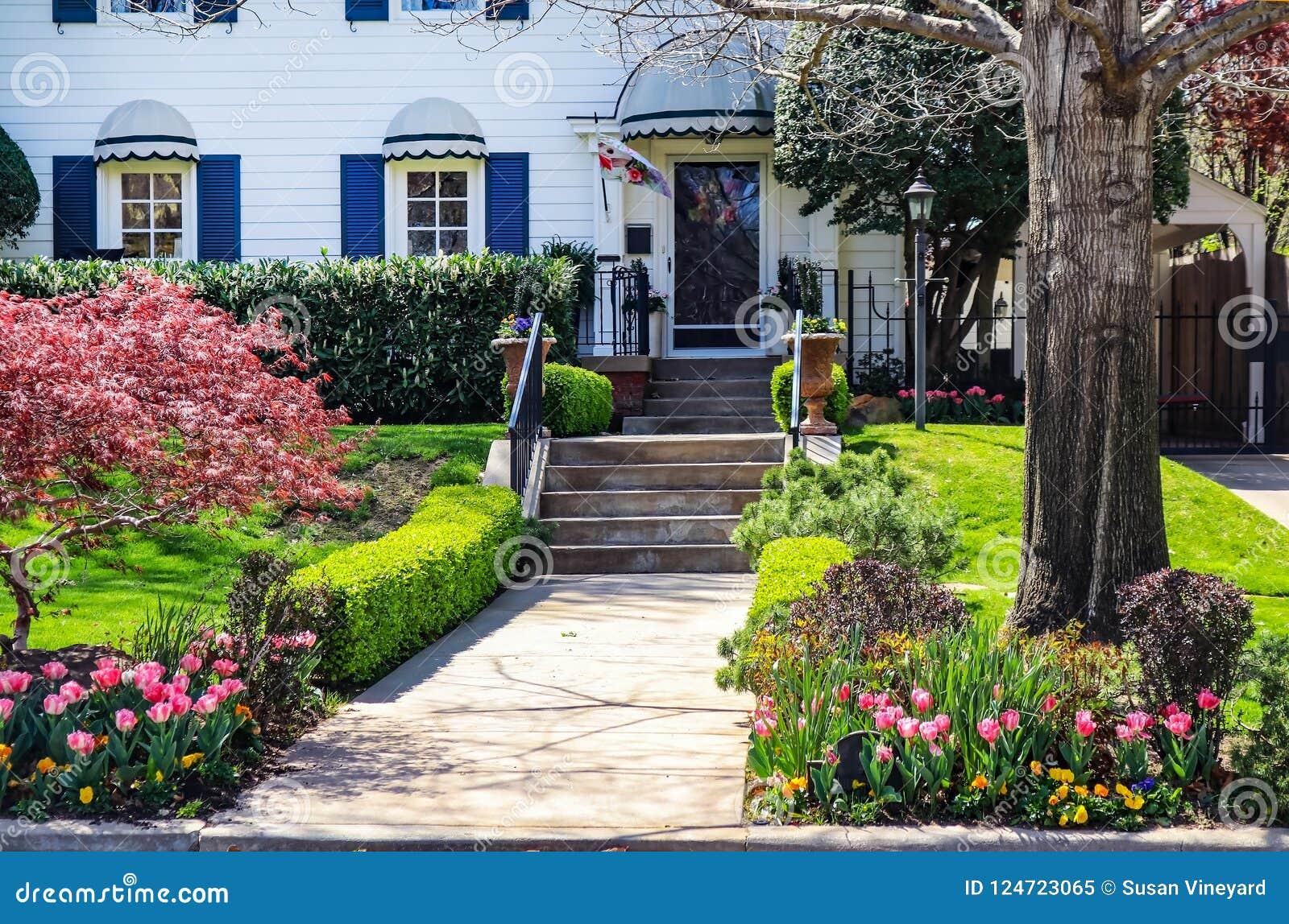 Милый деревянный дом с штарками сини и красивым благоустраивать и яркий флористический декоративный флаг дверью - с японским клен