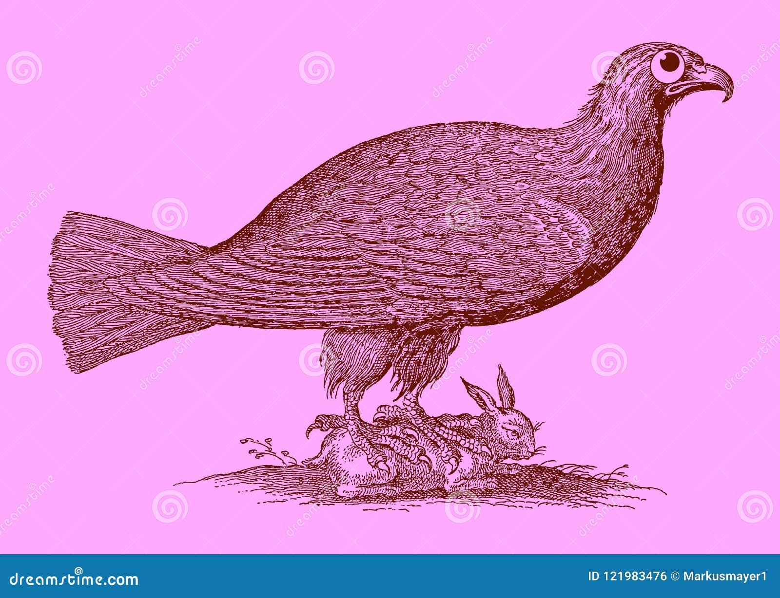 Милый хищник: орел сидя на захваченном кролике
