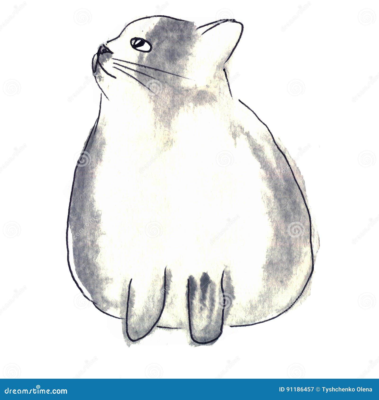 Милый бело-серый кот Акварель ягнится иллюстрация с отечественным