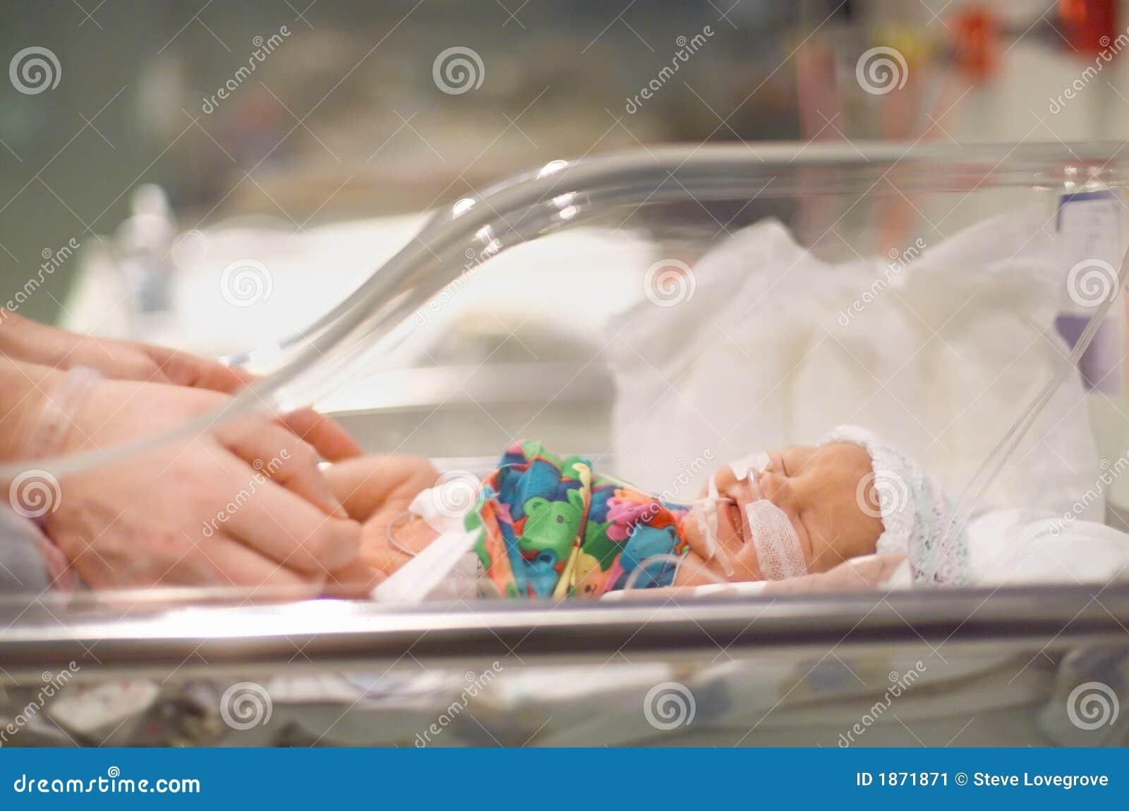младенец преждевременный