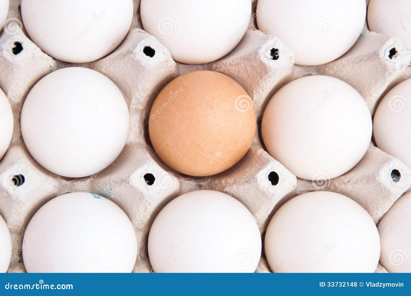 Много белизна и одно коричневое яичко