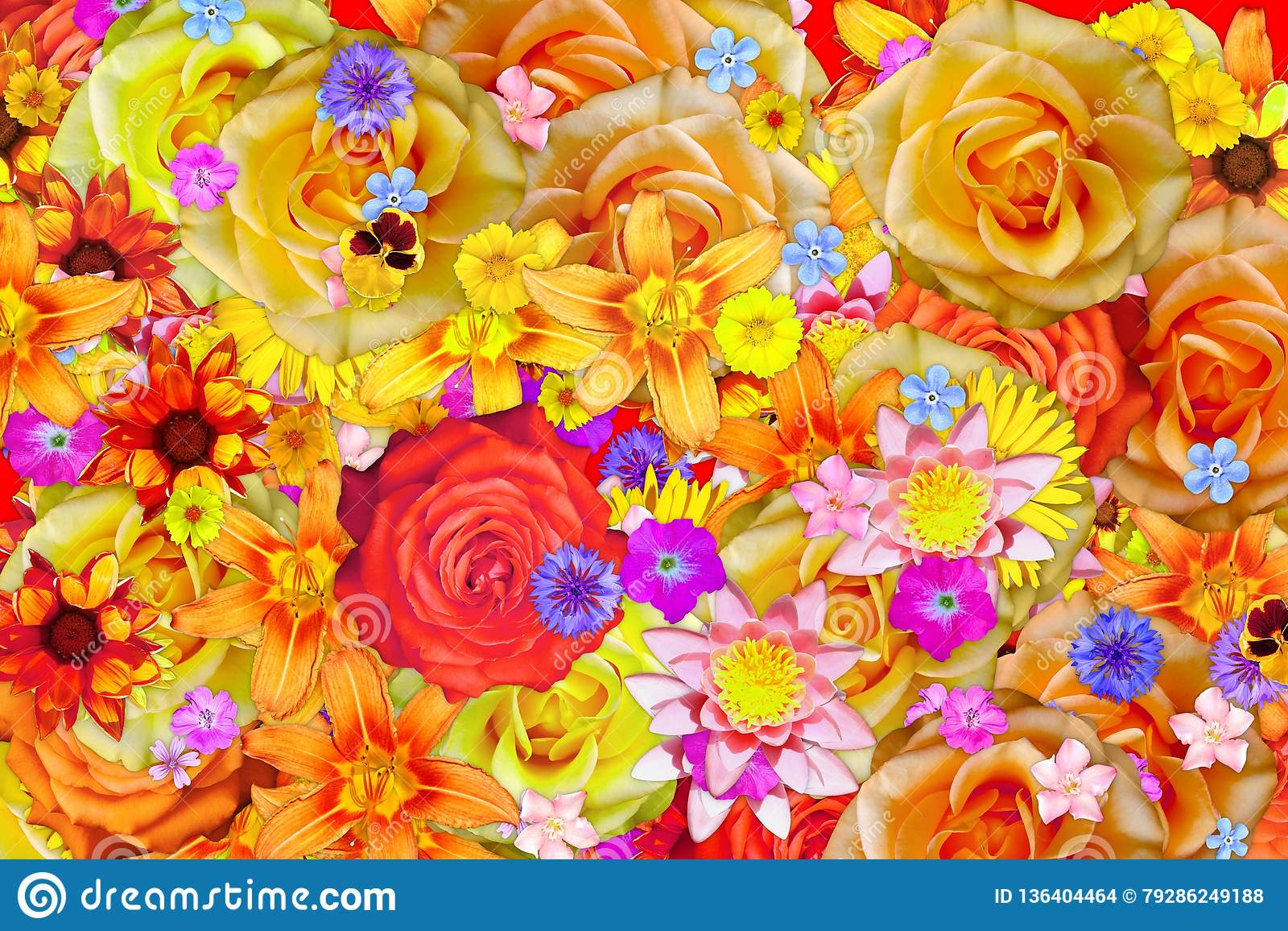 Много предпосылка зацветая цветка просвирника или мальвы и различных цветков абстрактная