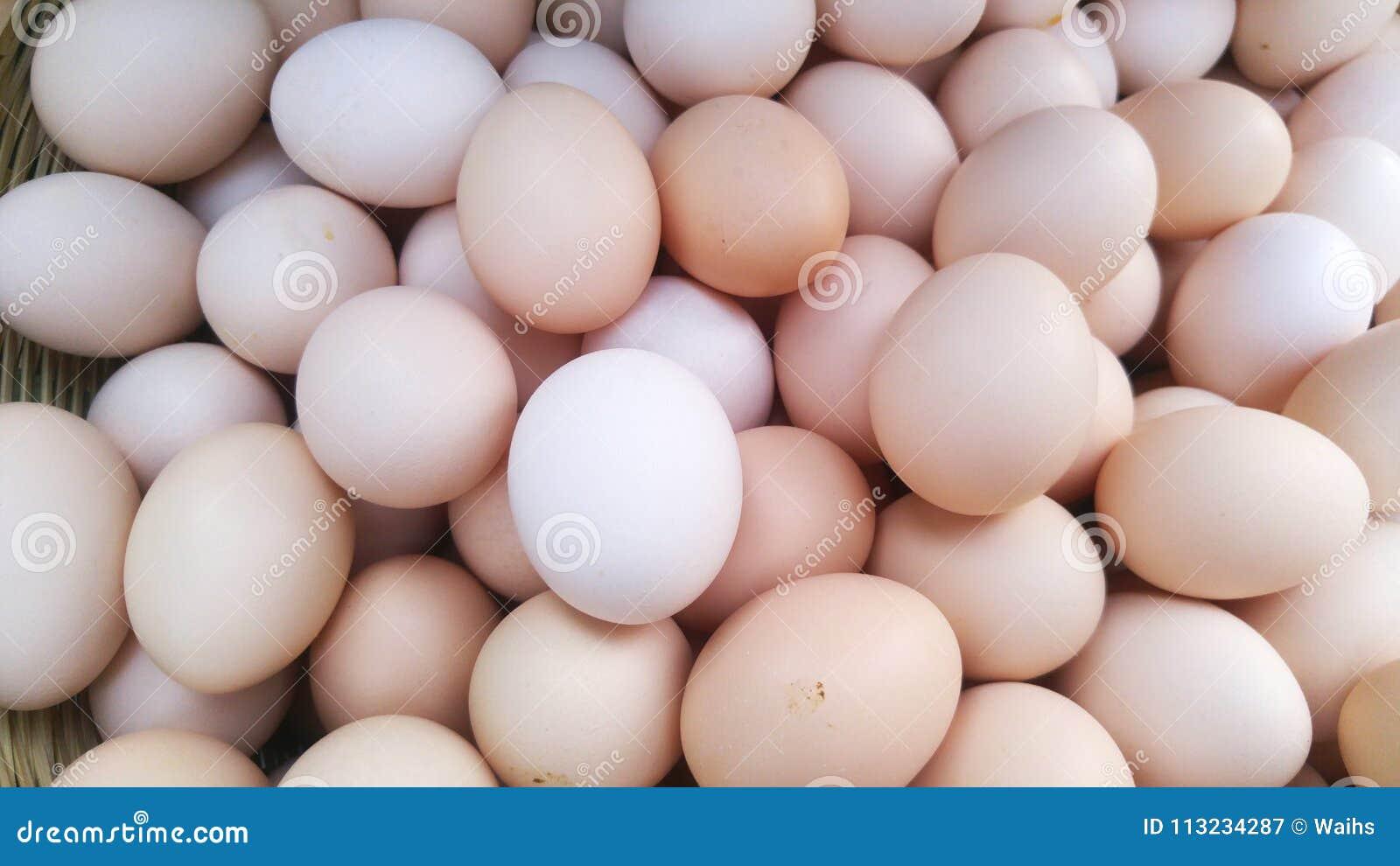 Яички в руке девушки, Русская красотка сжимает в руках мужские яйца и дает 18 фотография