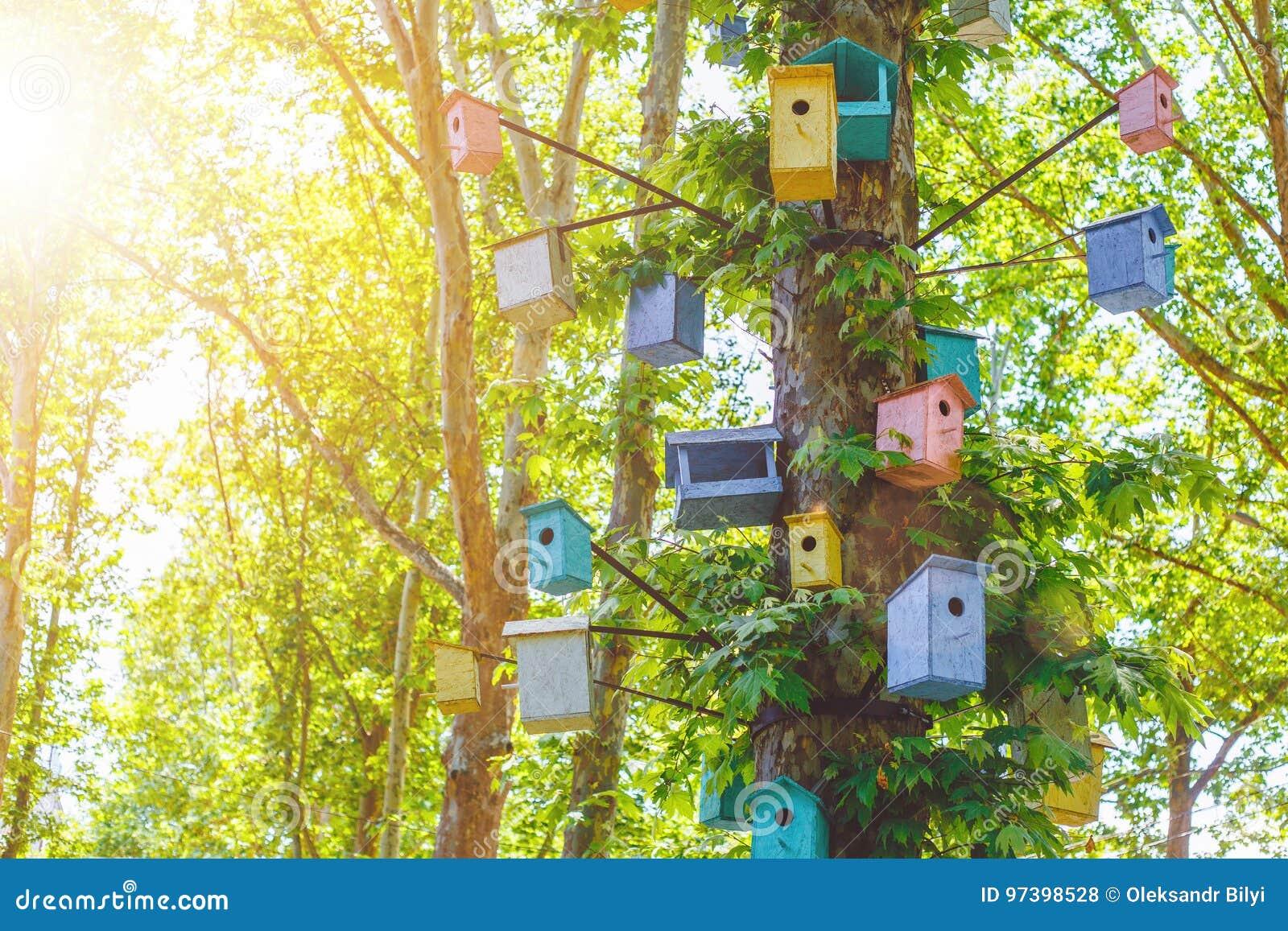 Много Birdhouses других цветов на дереве