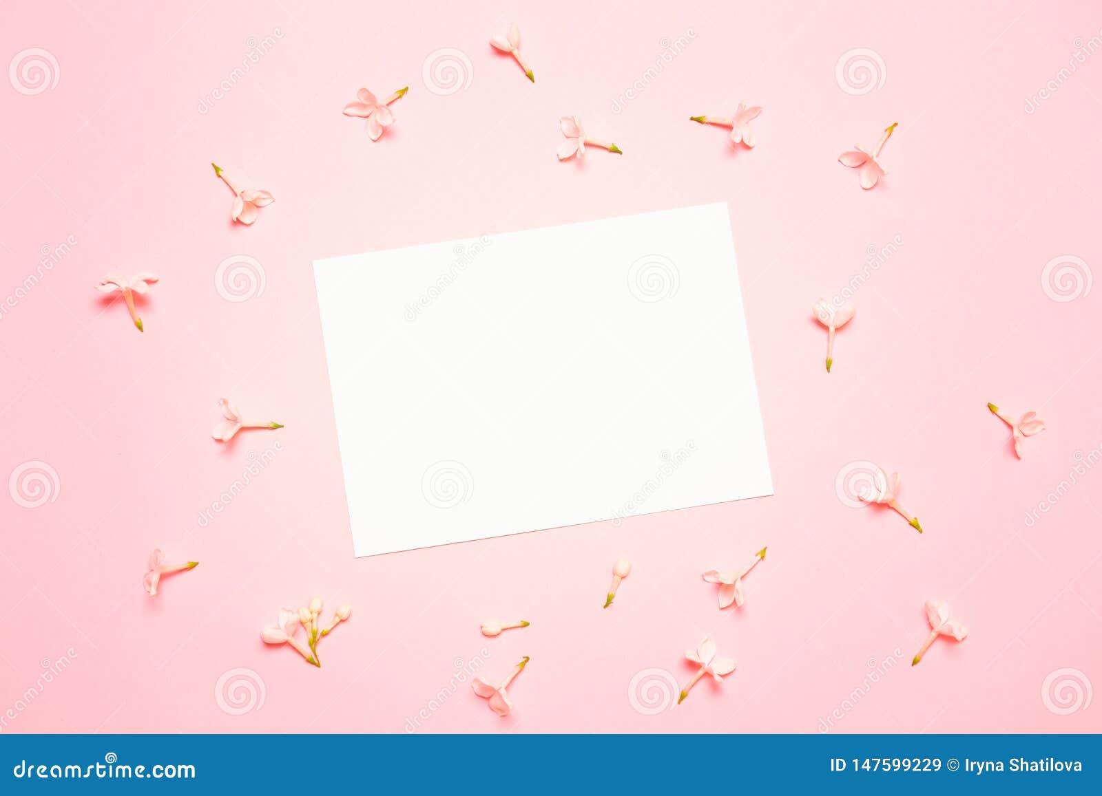 Модель-макет свадьбы со списком белой бумаги и цветки на голубой предпосылке сверху Красивый цветочный узор r