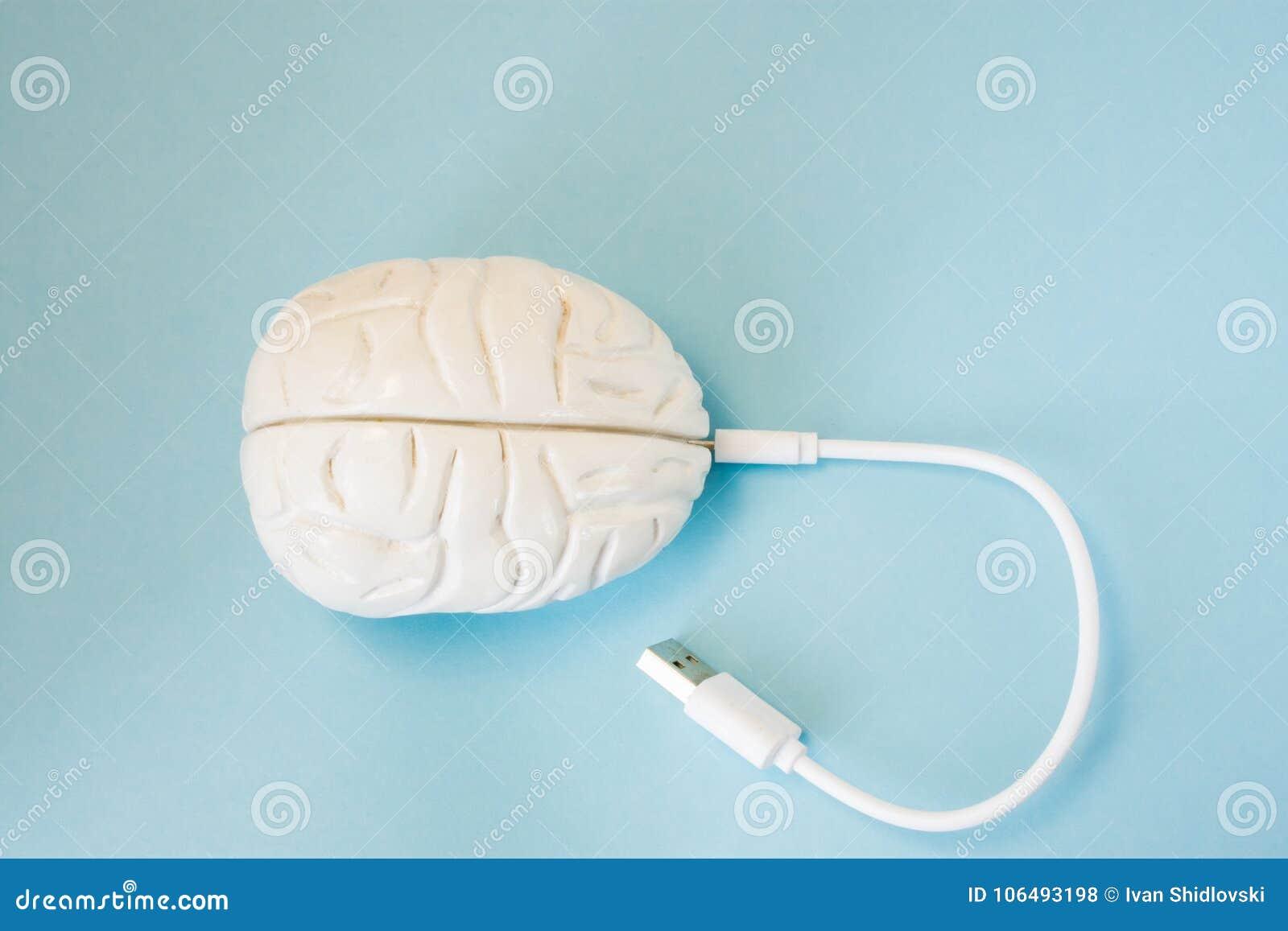 Мозг с введенный в провод штепсельной вилки гнезда или поручая шнур Технология концепции связала проволокой передачу данных, инфо
