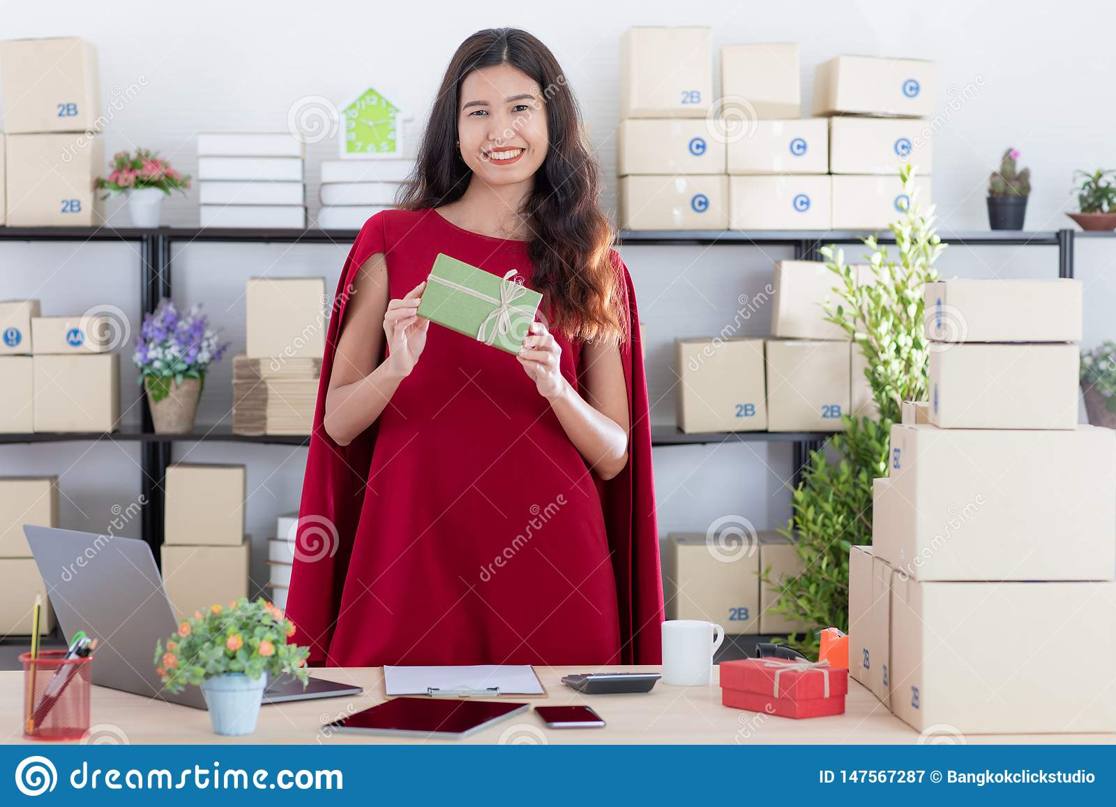 Молодая дама работая дома офис
