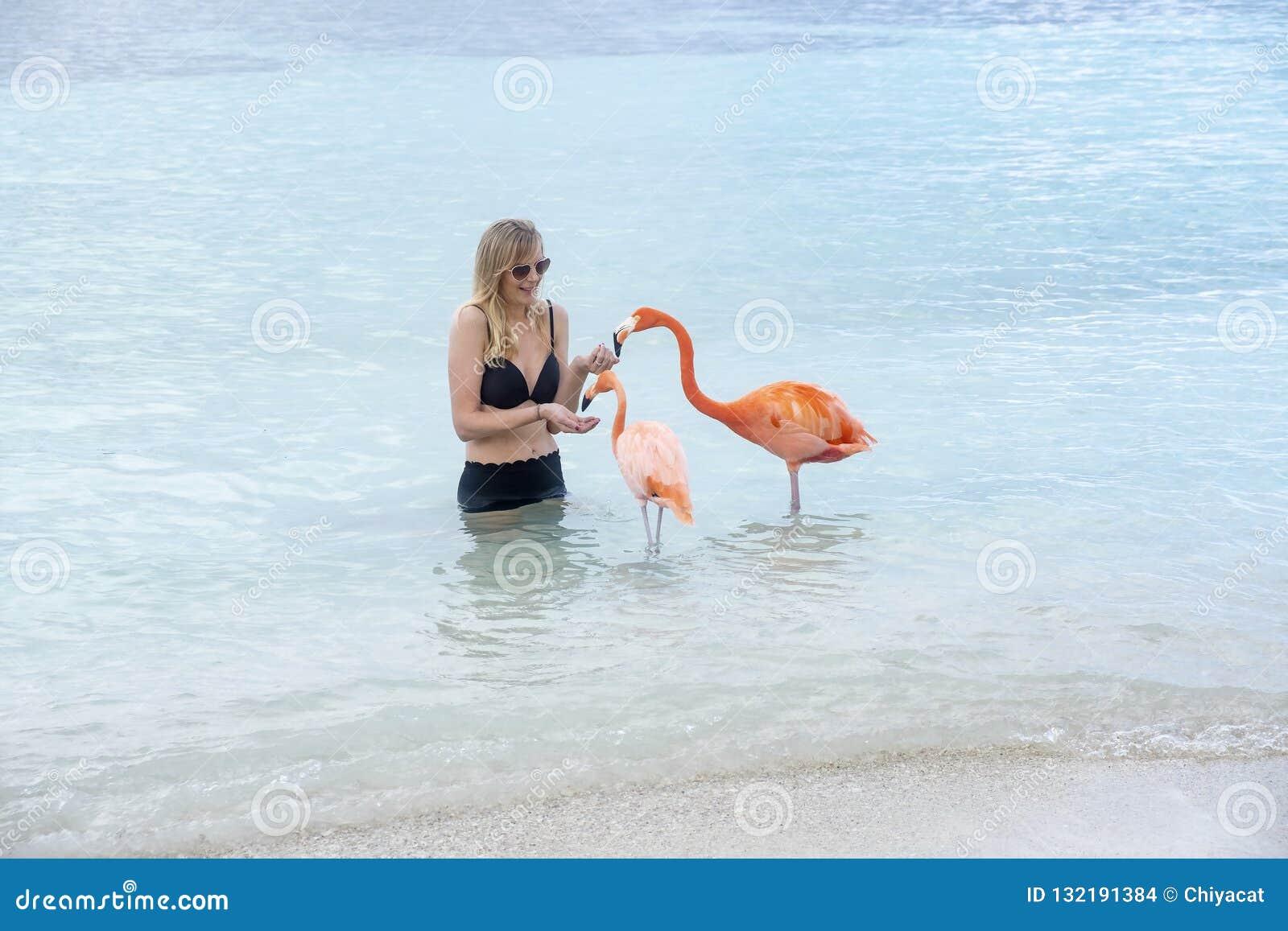 Молодая женщина с длинными светлыми волосами в черном бикини кормить розовые фламинго на пляже